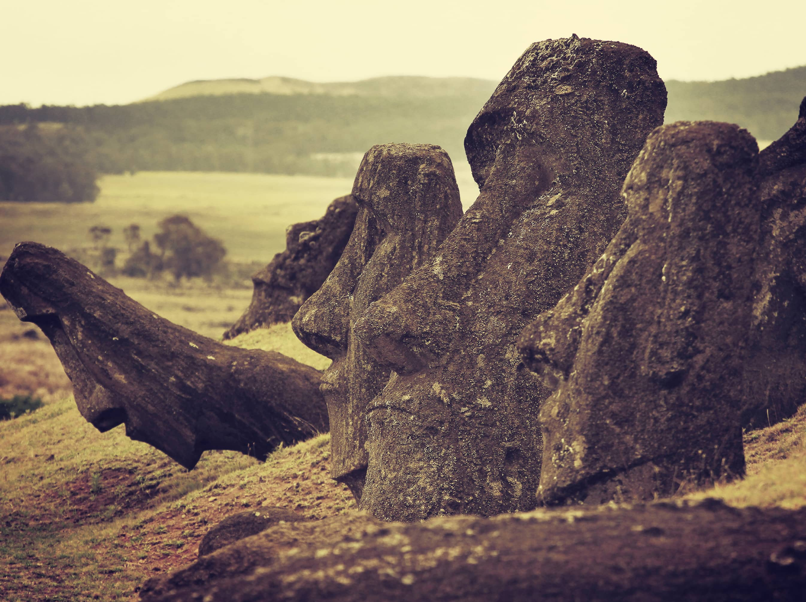 "Explore the birthplace of the ""Moai."""