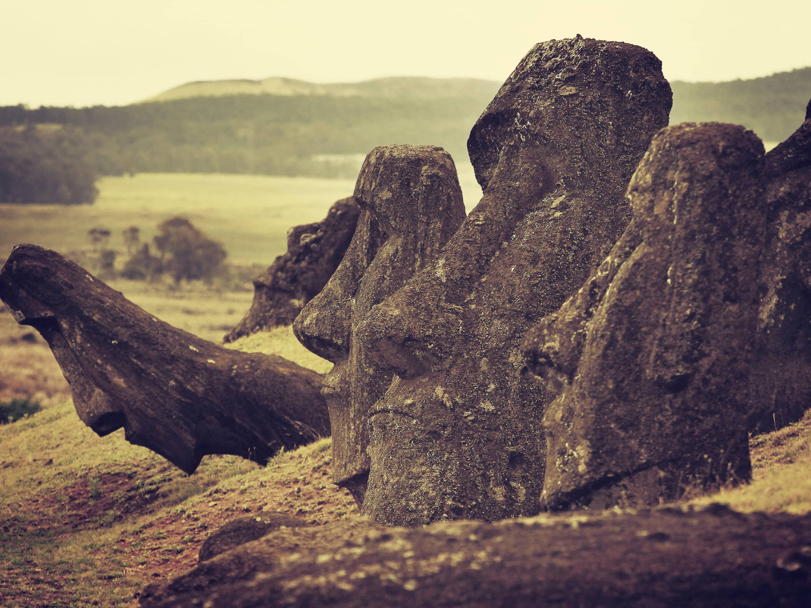 "Explore the birthplace of the ""Moai"""