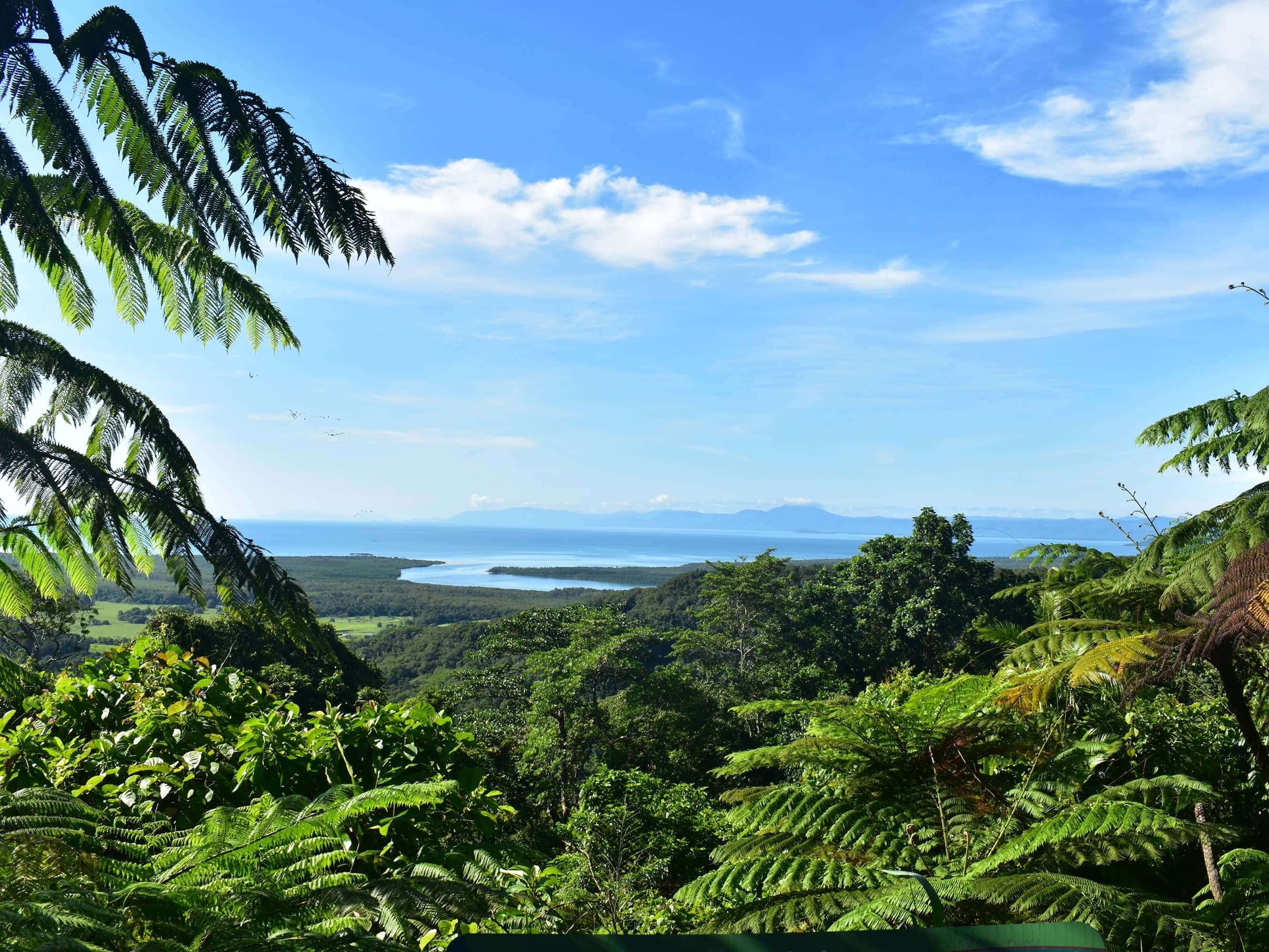 Experience the tranquillity of the rain forest