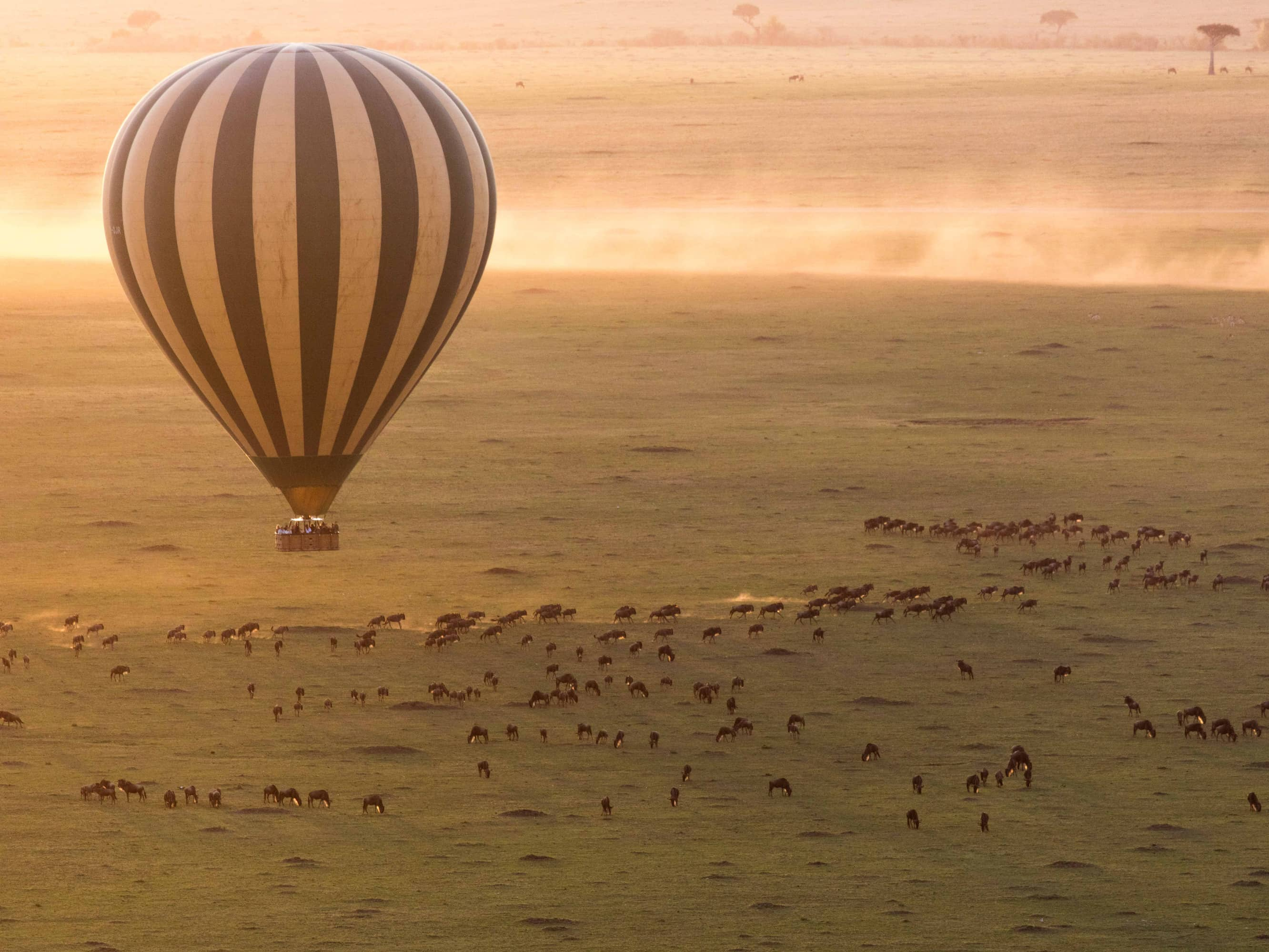 SOAR OVER THE SERENGETI IN A HOT-AIR BALLOON