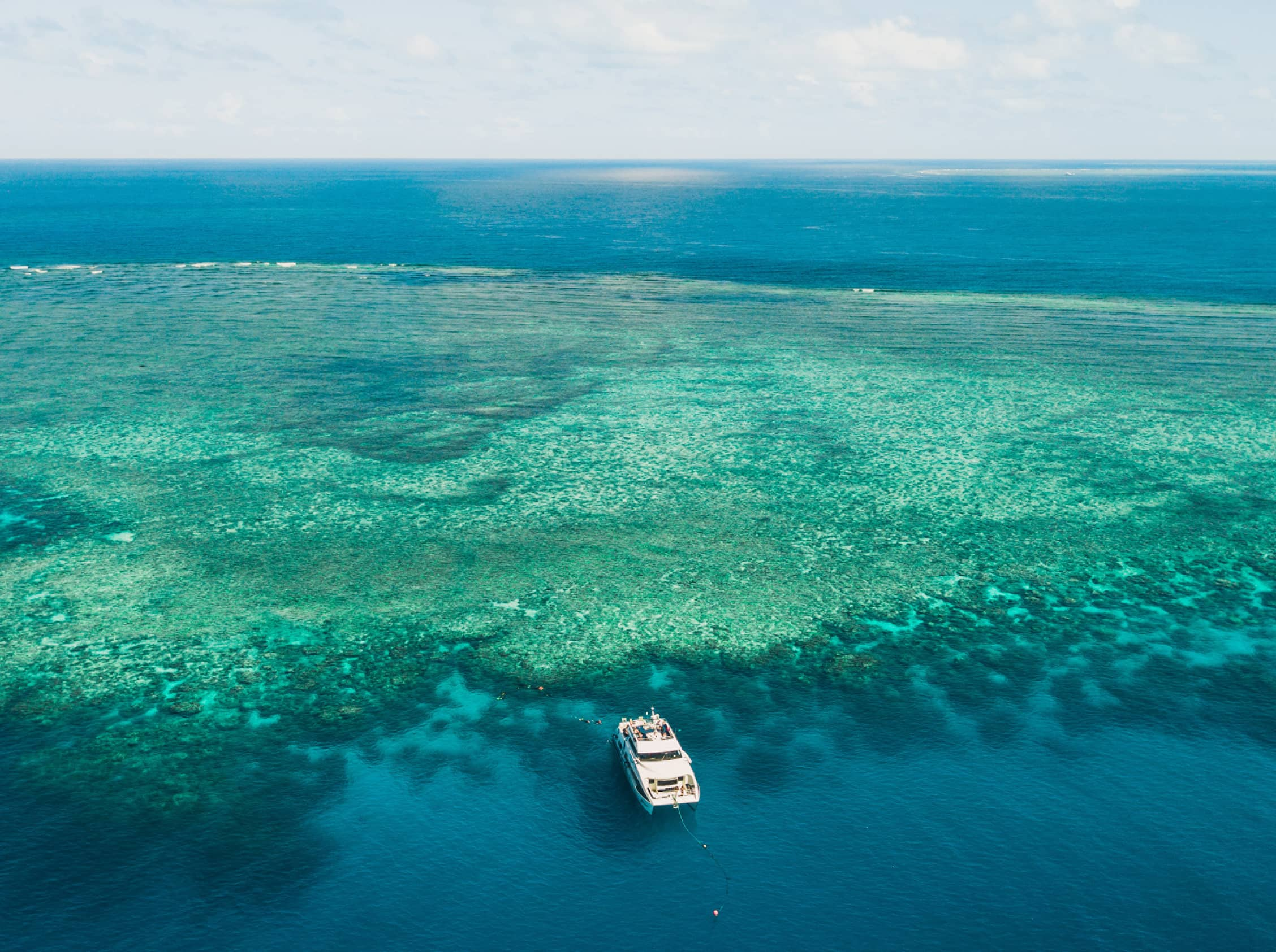 Explore the world's largest reef on a private cruise.
