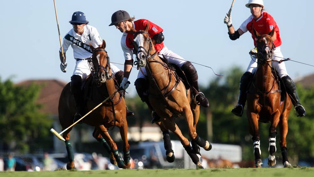 Gear Up For The Season In Palm Beach With Tips From Polo Expert Georgette Escobar And Pro Player Kris Kampsen