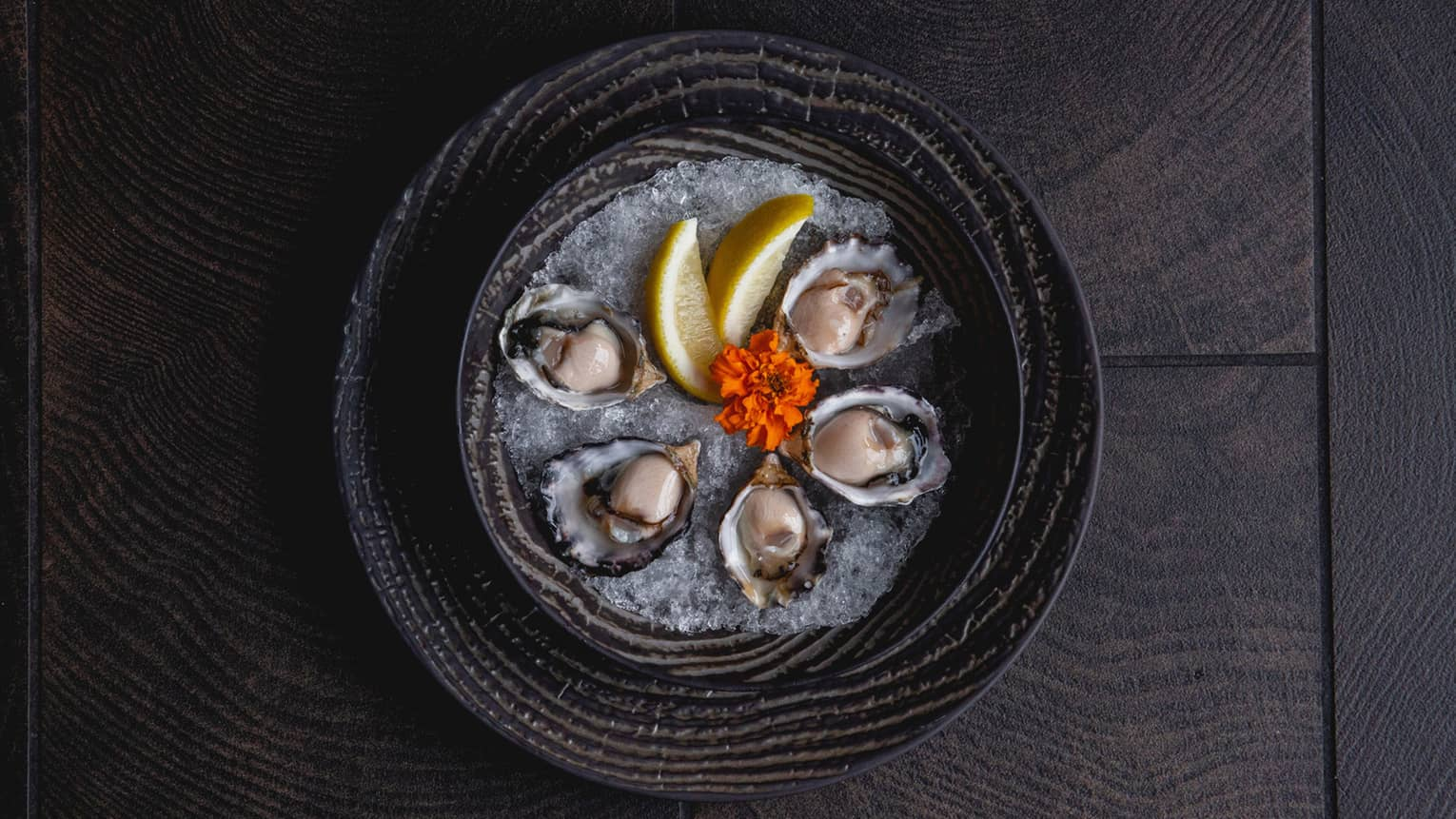 Aerial view of platter with oysters, lemon wedges, red flower on ice