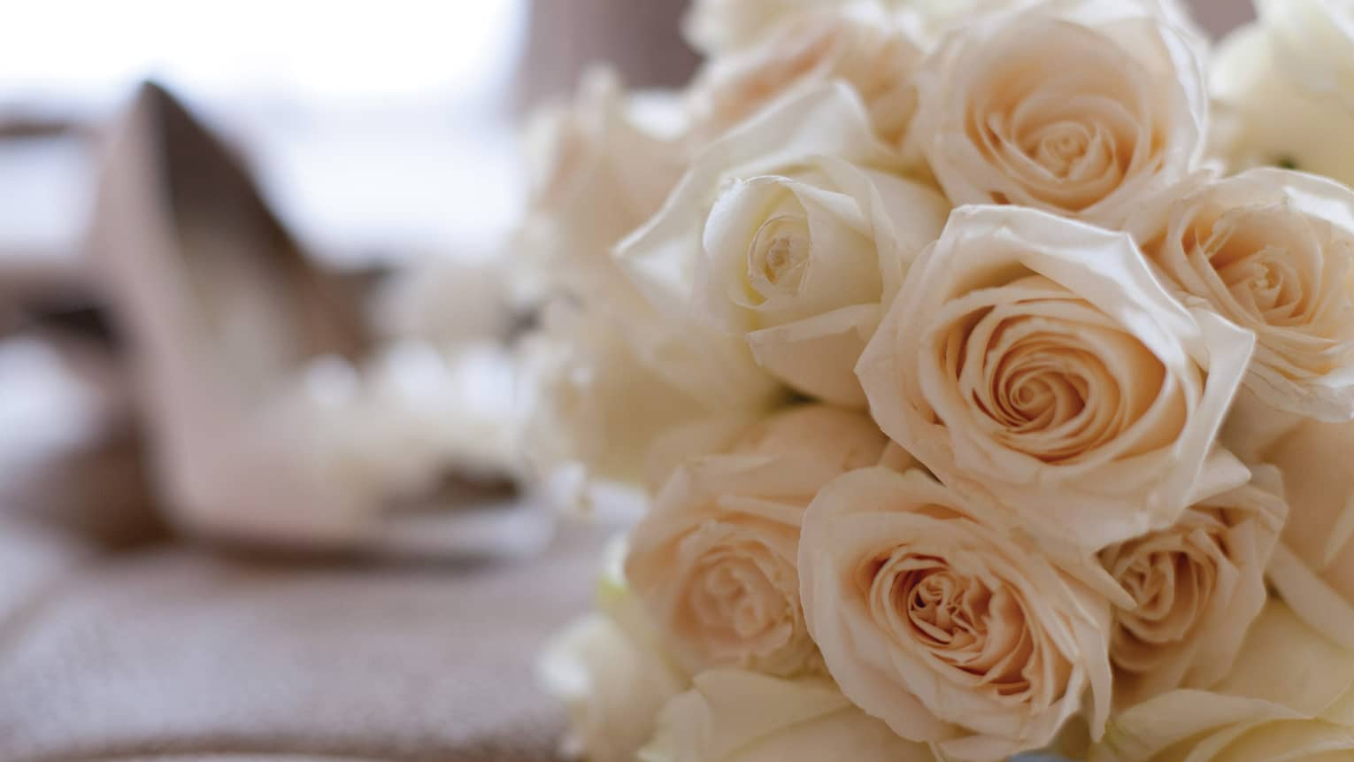 Bouquet of light pink roses, high heeled shoe in background