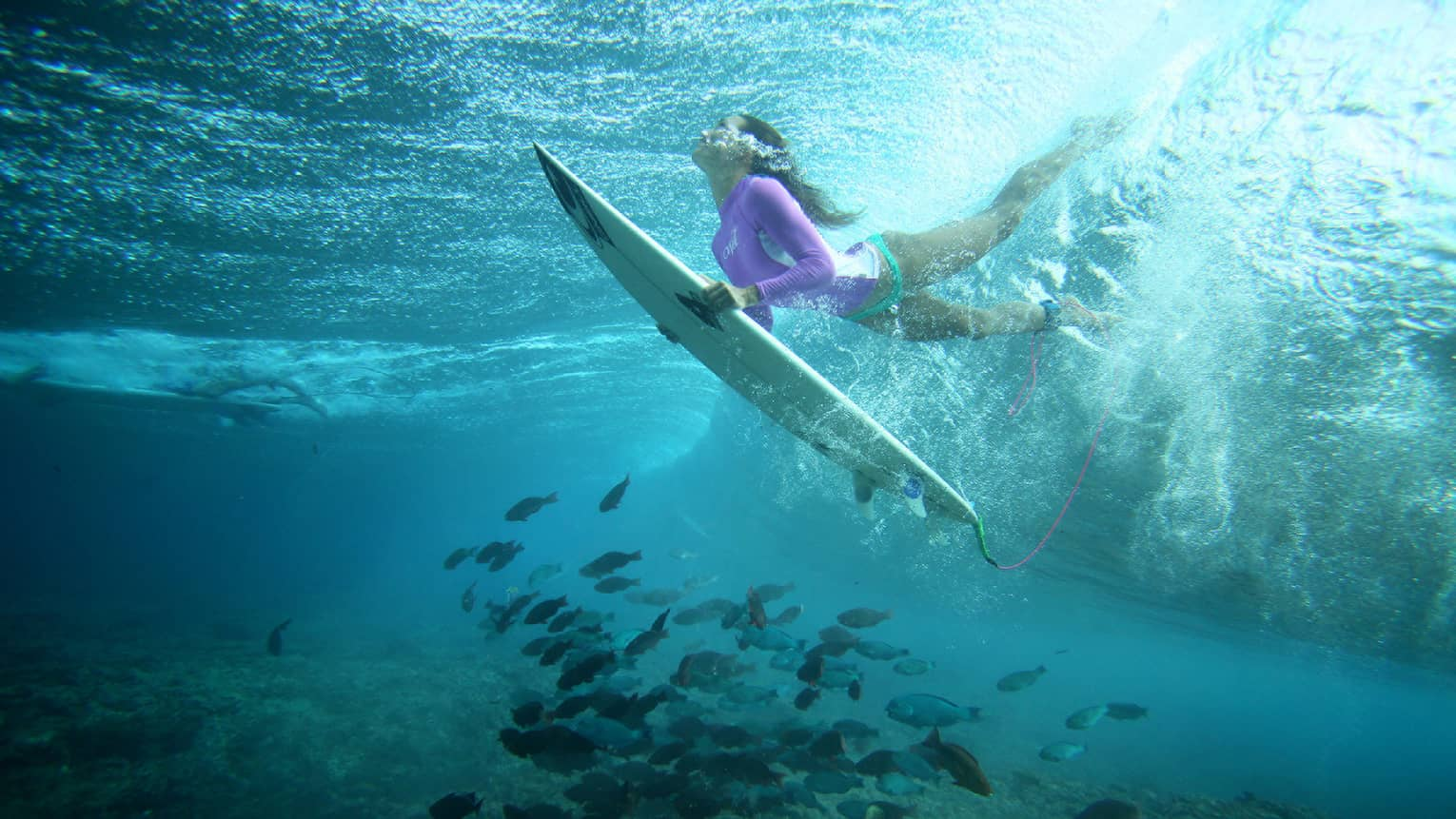 Céline Gehret, ascending from the water above a school of fish as she surfs in the Maldives