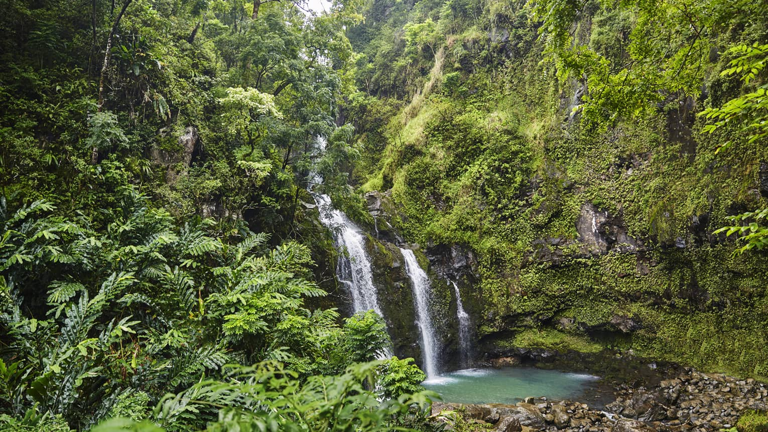 Waterfall flows over rock surrounded by lush green tropical forest
