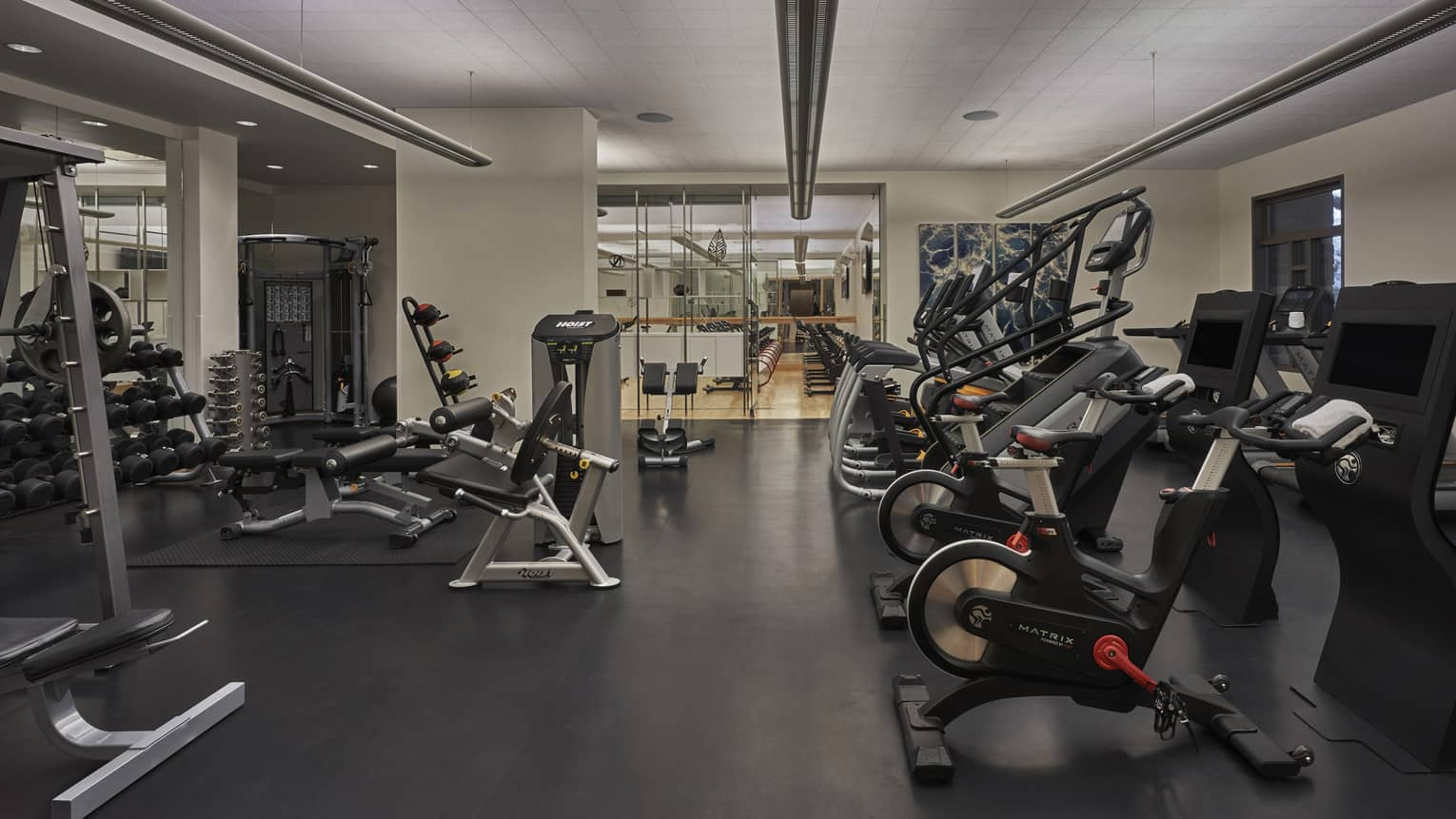 Indoor gym, white walls, black floors, various weight-training and cardio machines