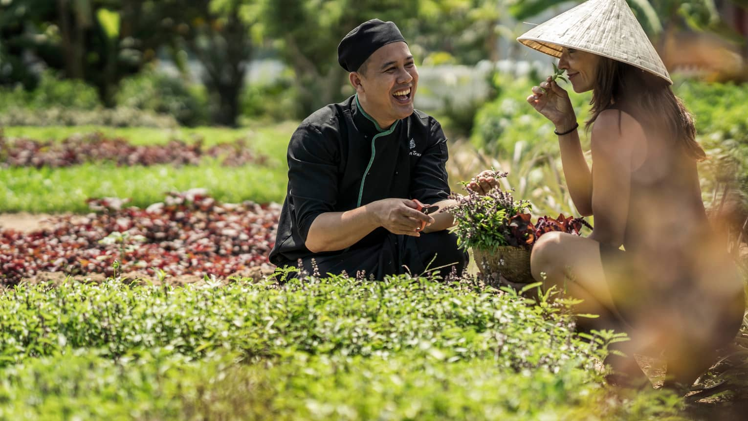 Chef, woman in hat kneel in sunny herb garden