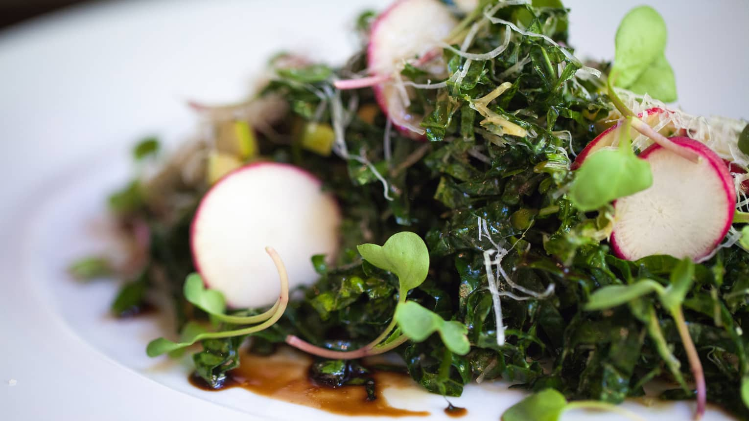 Close-up of kale salad with radish slices, sprouts