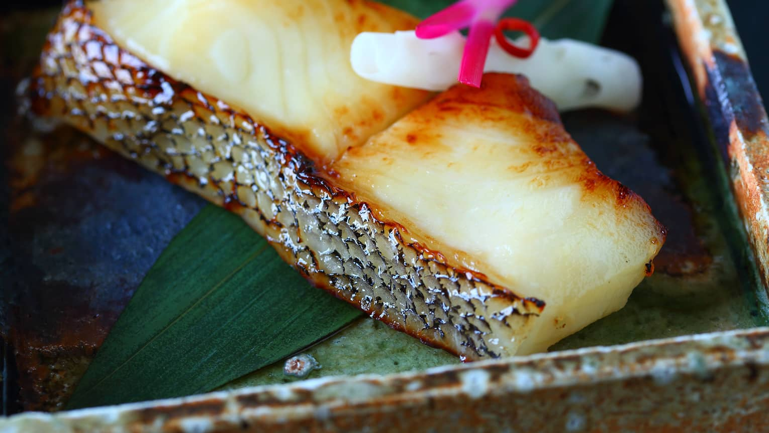 Close-up of grilled black cod filet with saikyo-miso sauce