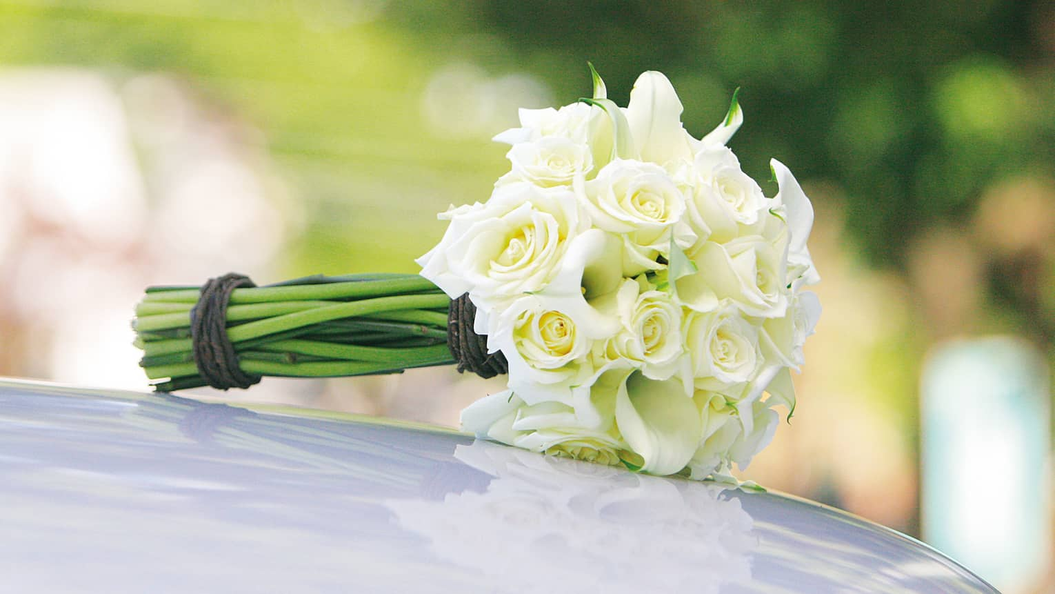 Wedding bouquet of white roses rests on hood of white car