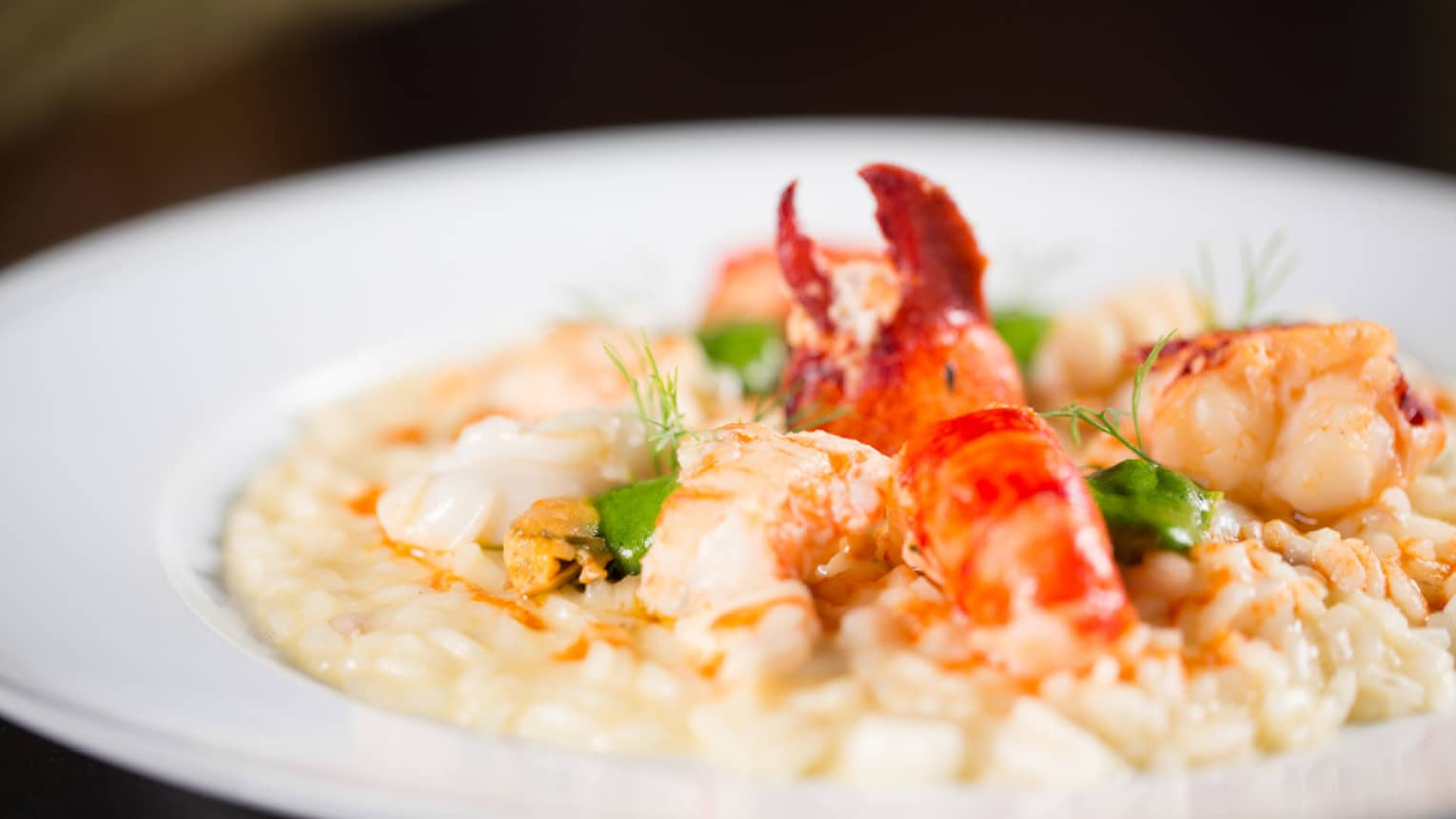 Creamy seafood risotto in white dish with lobster, prawns, langoustine and mussels