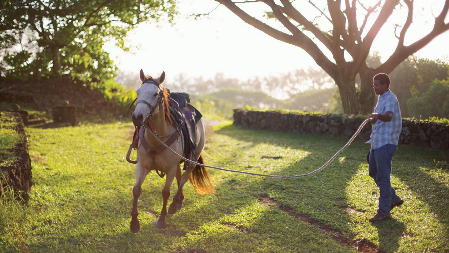 A saddled horse, ready to be ridden at Hana Ranch