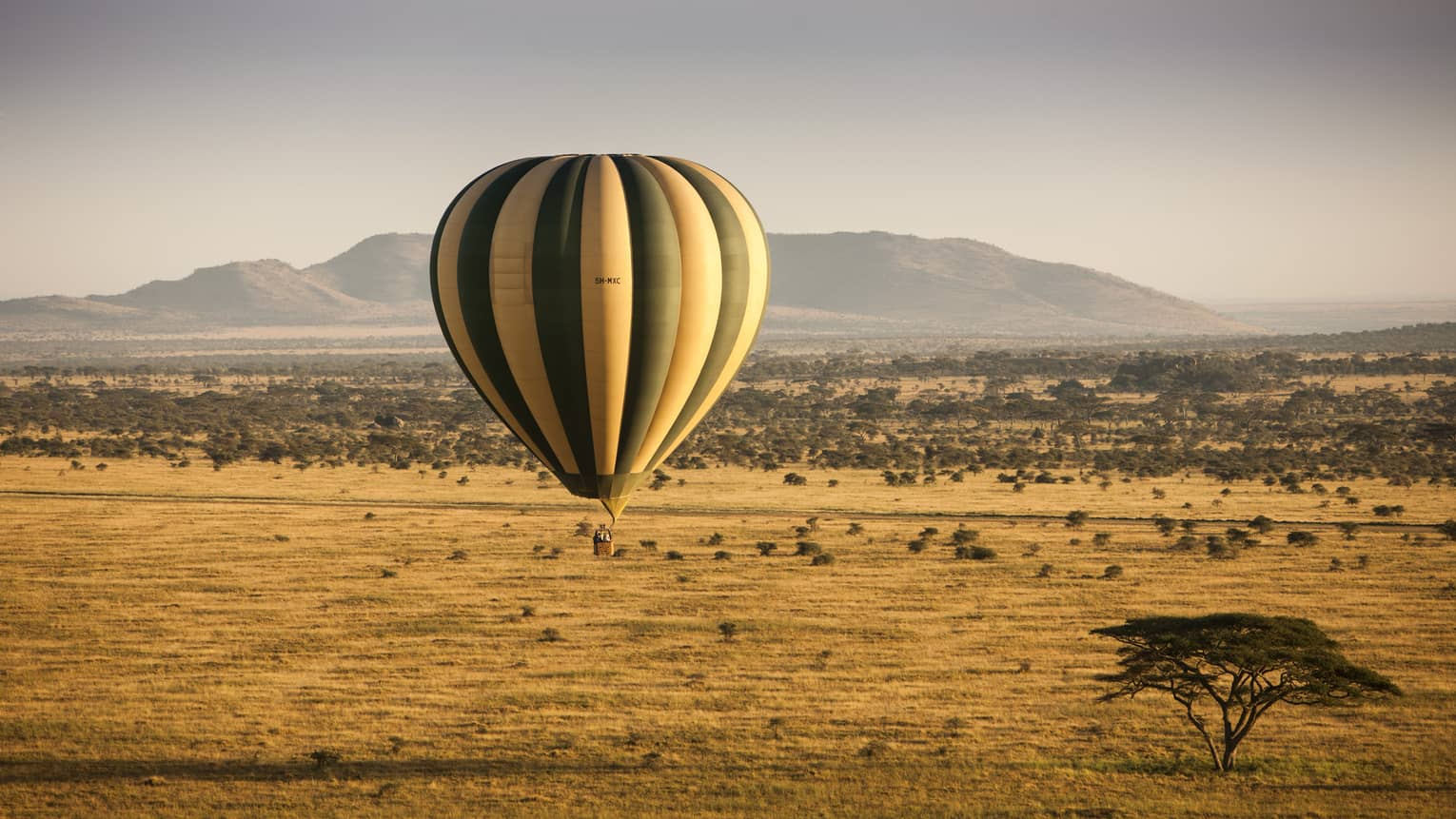 Stripped hot air balloon hovers over landscape of Serengeti, mountain in background