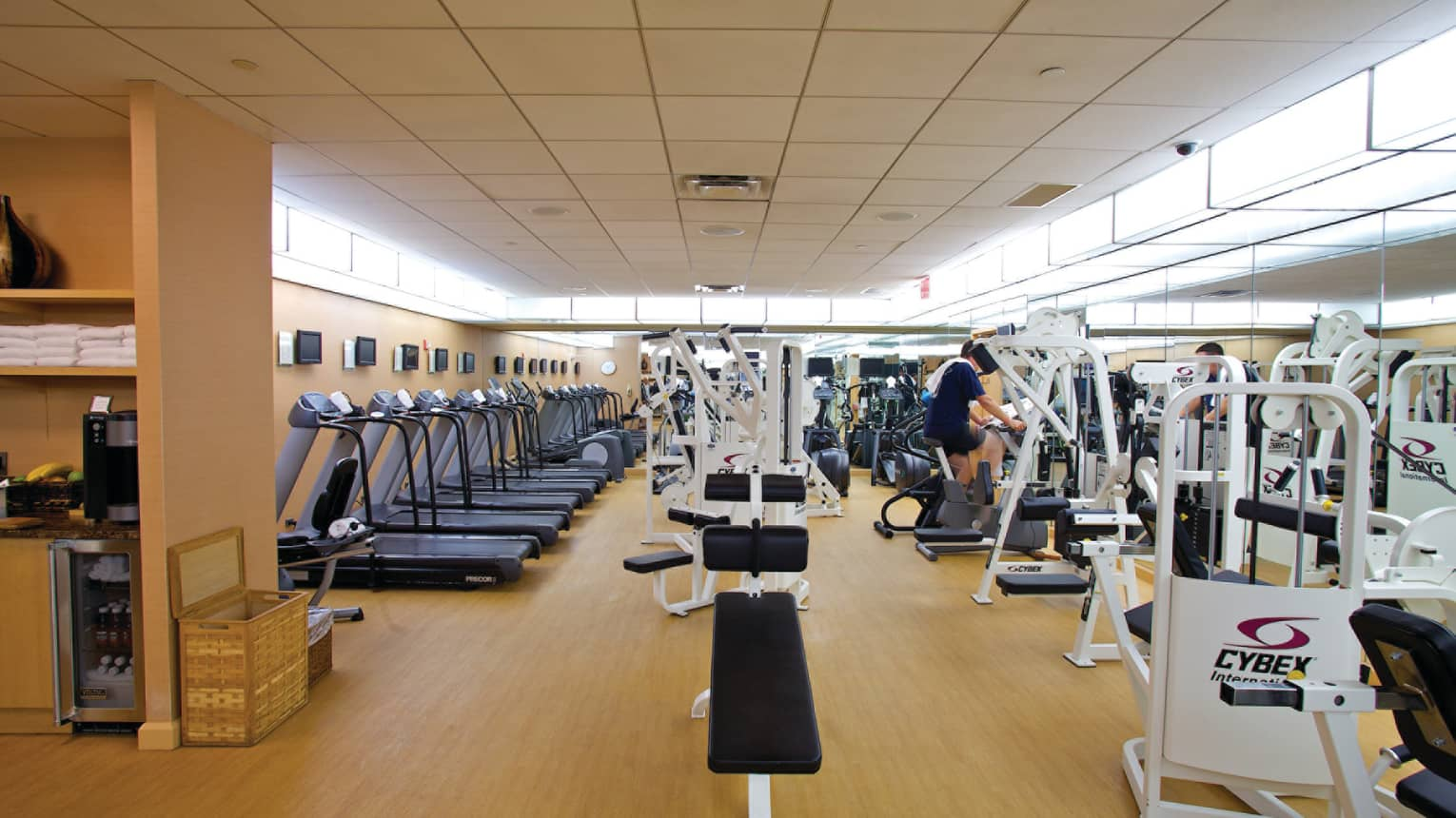 Rows of cardio machines, treadmills, bench presses in large Fitness Centre