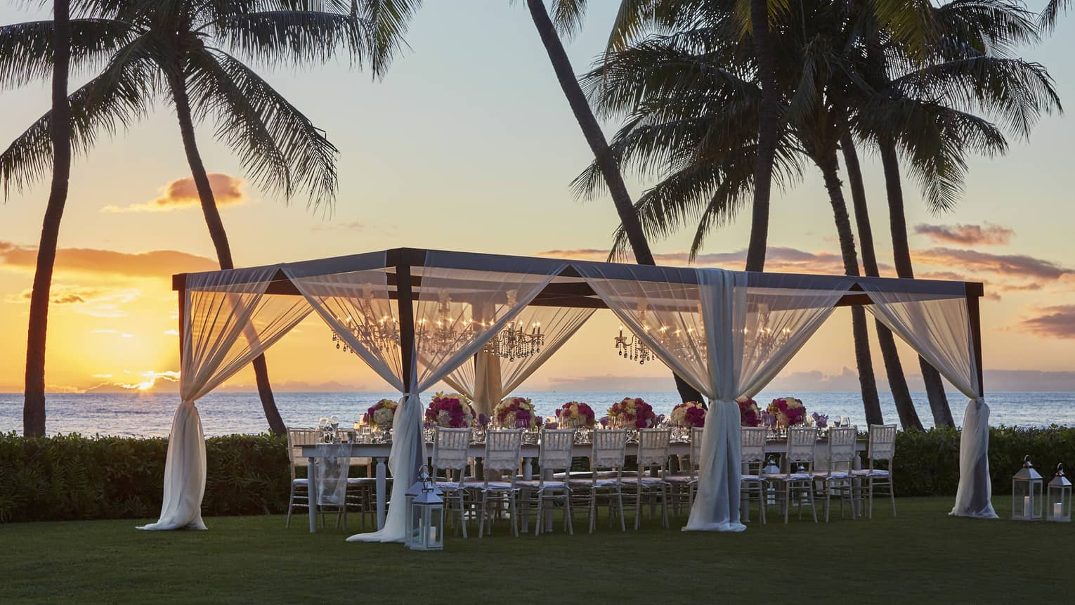 Pergola with sheer white curtains over wedding dining table on lawn by palm trees, ocean at sunset