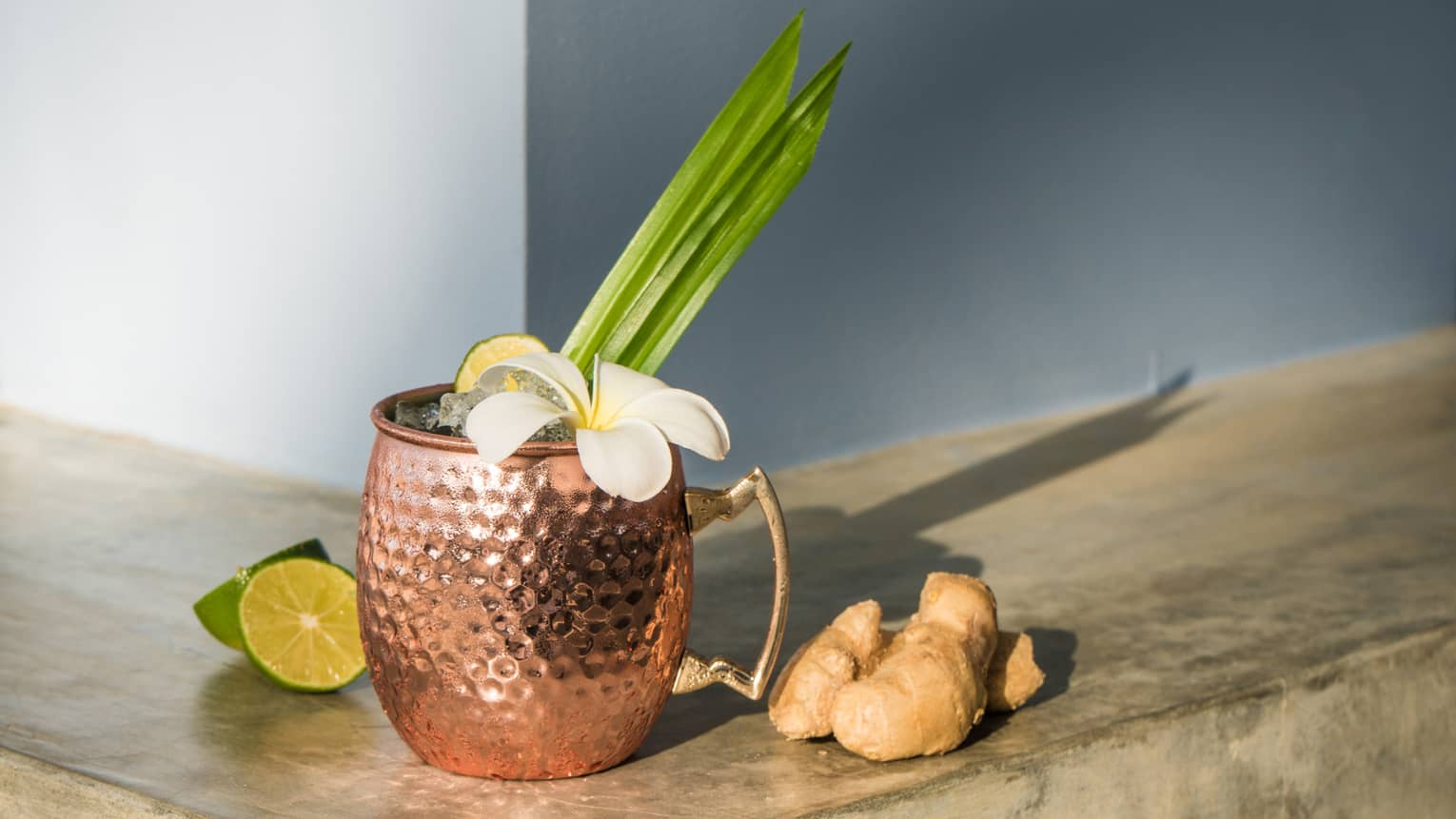 A moscow mule in a hammered copper cup with limes and ginger beside it on a wooden ledge