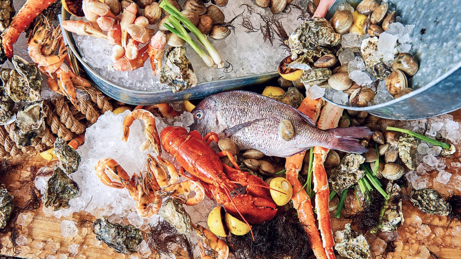 Aerial view seafood platter with whole fish, lobsters, clams and shrimps on bed of ice cubes