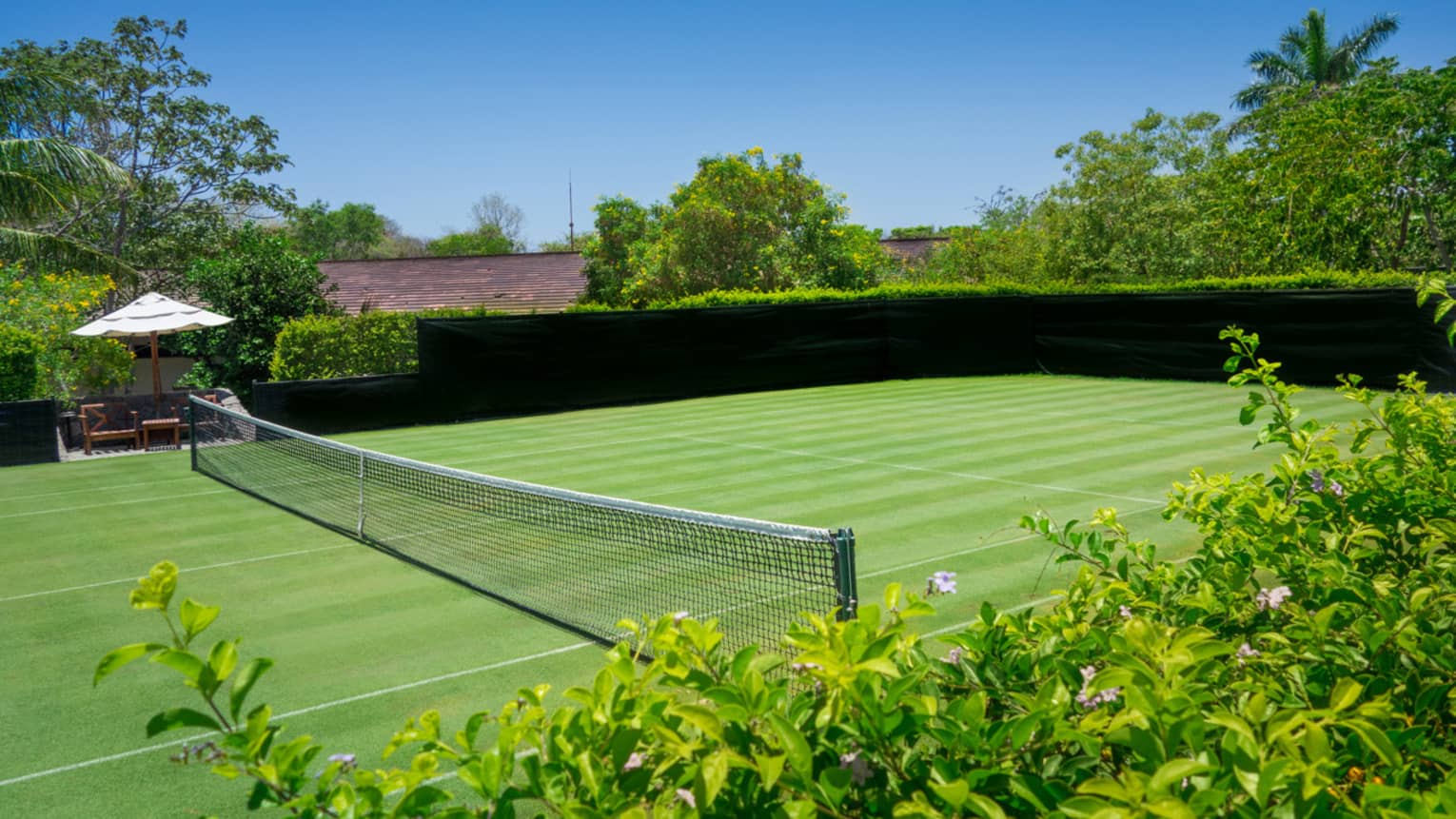 Looking down on empty green tennis court, net surrounded by green bushes, trees
