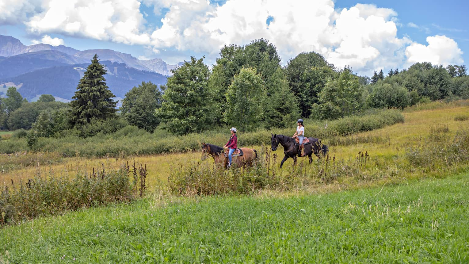 Two people horseback riding on green mountainside in French Alps