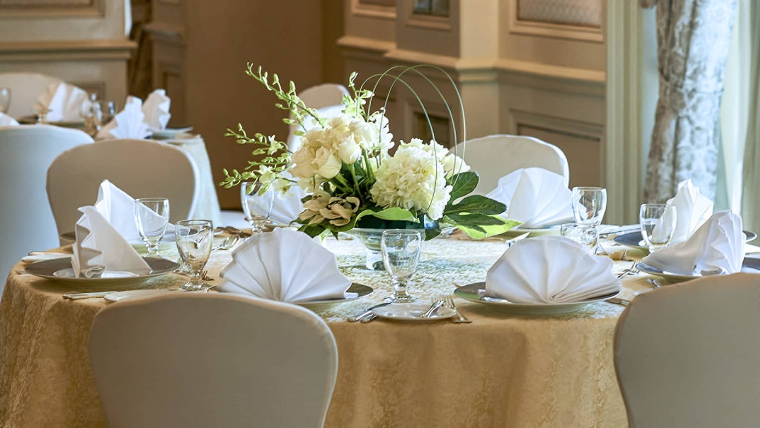 Close-up of banquet dining table with place settings, white flowers, napkins folded like fans