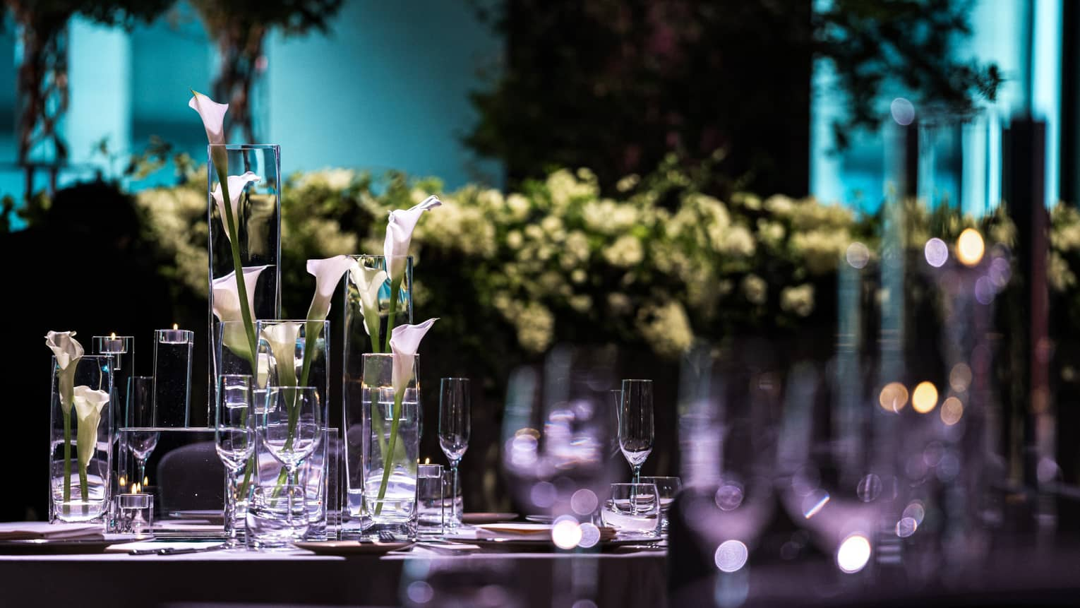 Long stemmed flowers in glass vases on table in event room with blue and purple lights