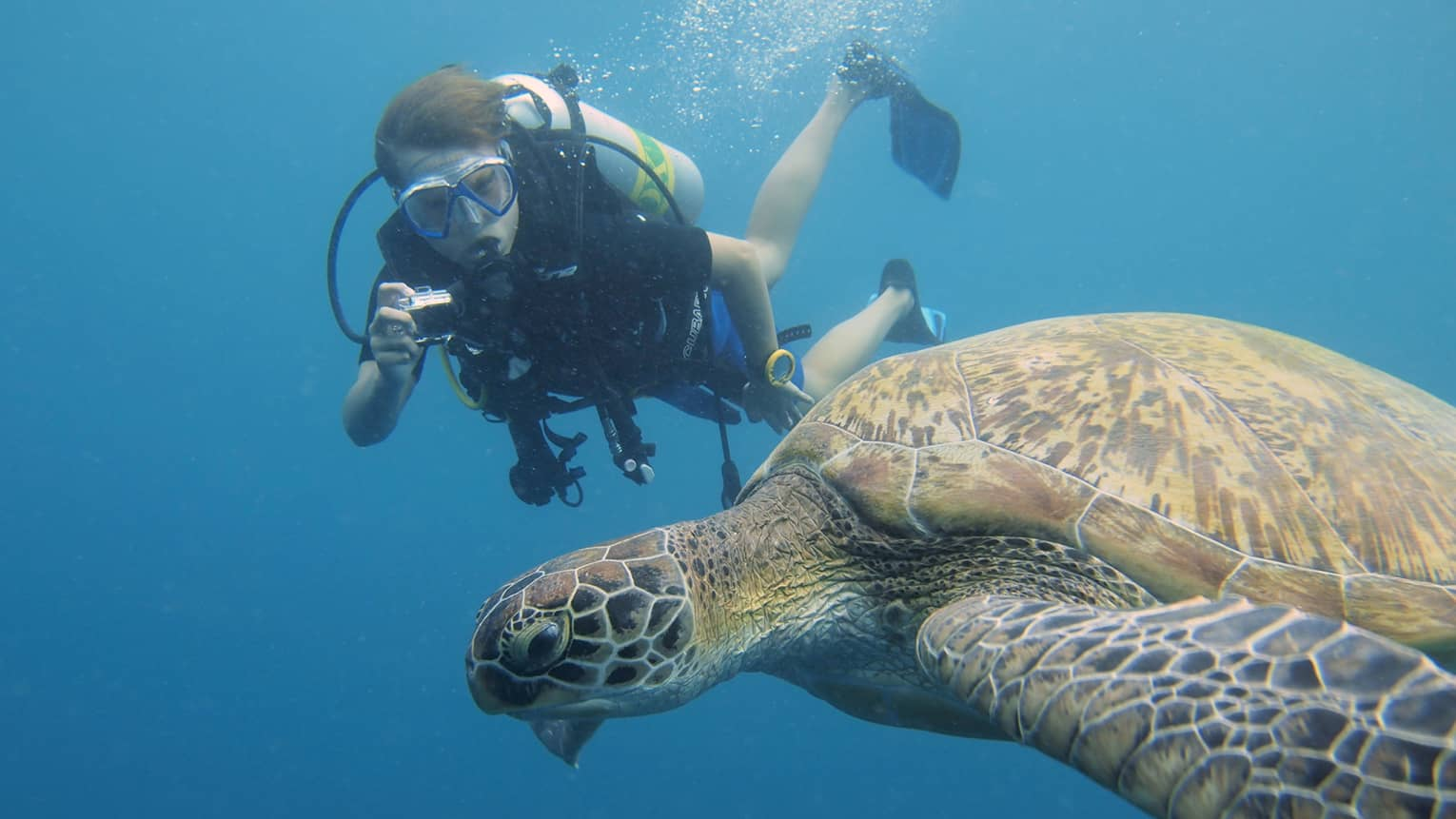 Scuba diver with underwater camera takes photo of large turtle