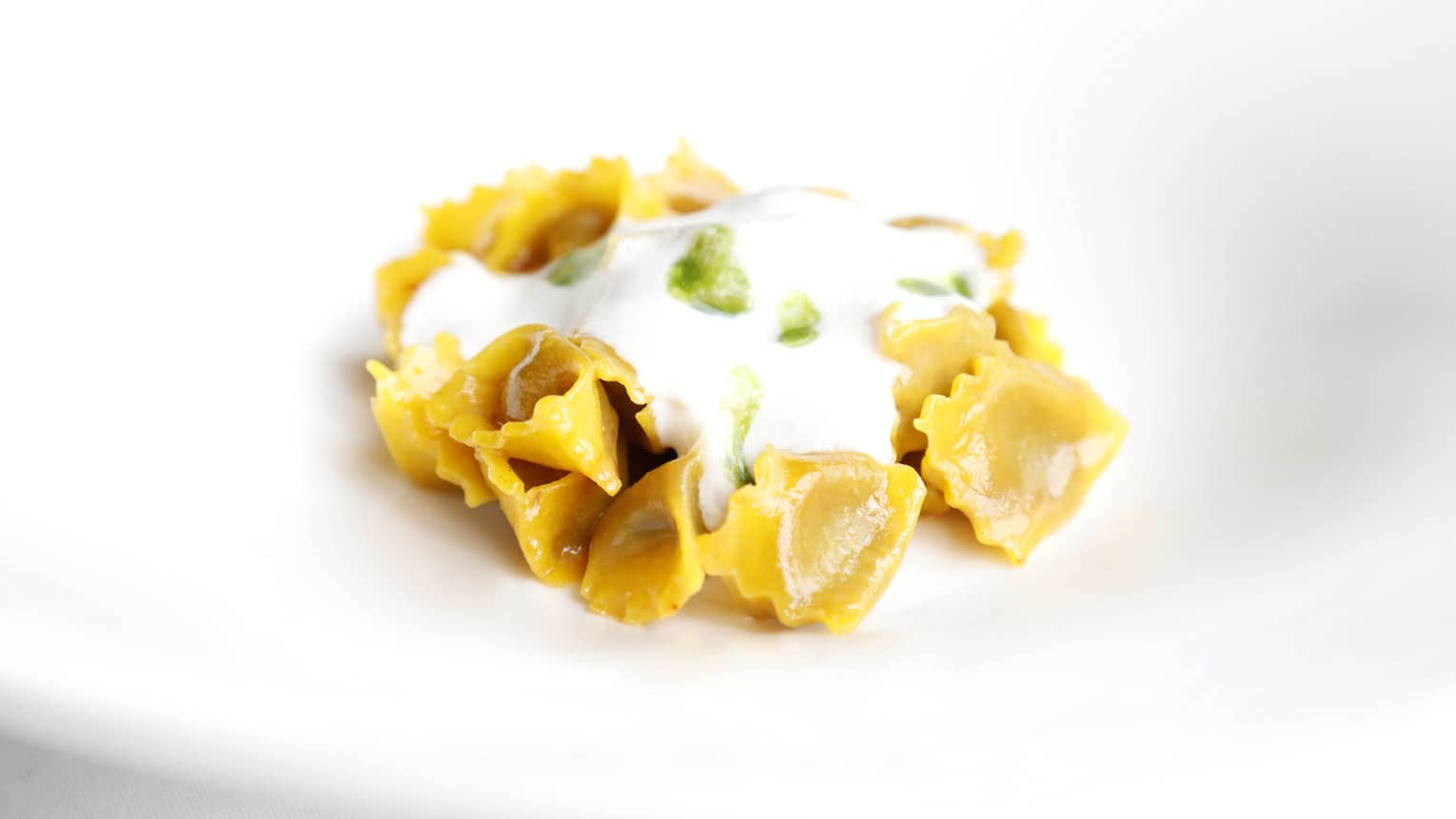 Veal-Filled Small Ravioli pasta on plate smothered in white cheese sauce