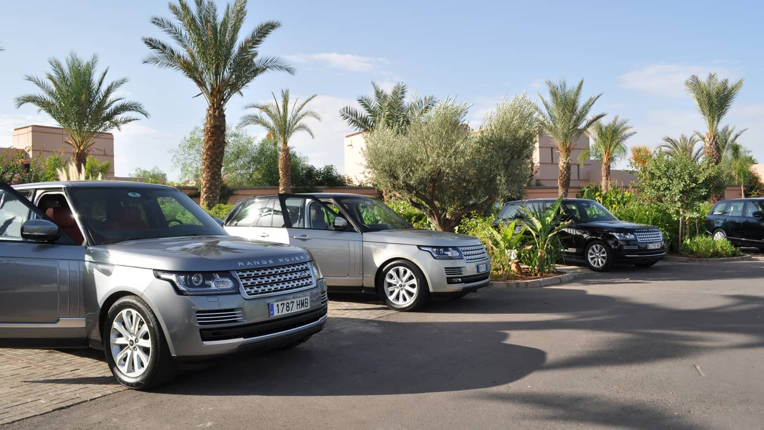 Luxury Range Rover cars with open doors parked under palm trees, blue sky