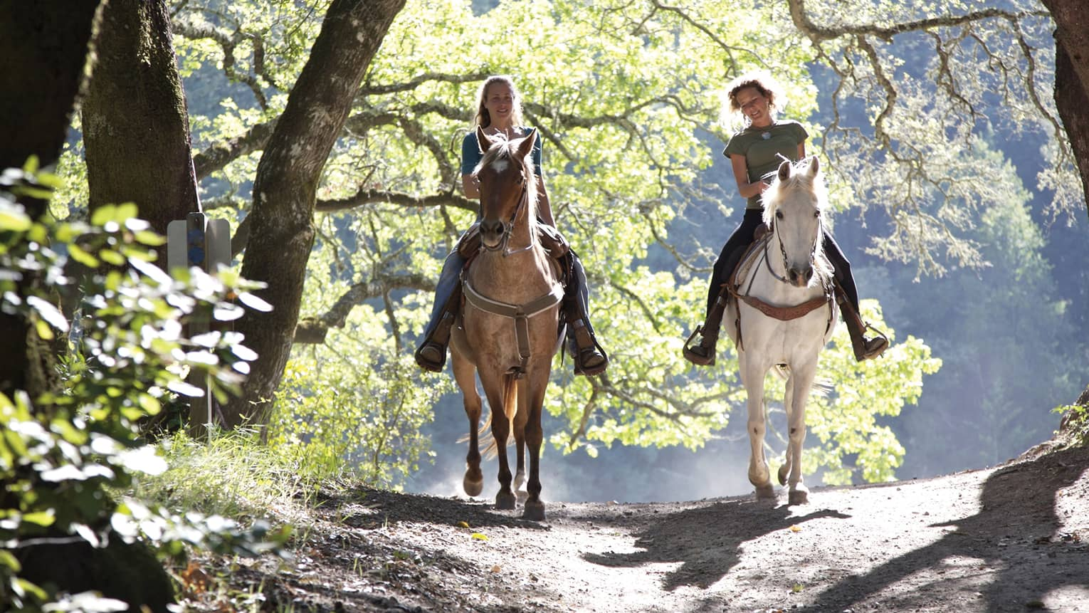 Two smiling women horseback riding on sunny path, one on brown horse and one on white horse