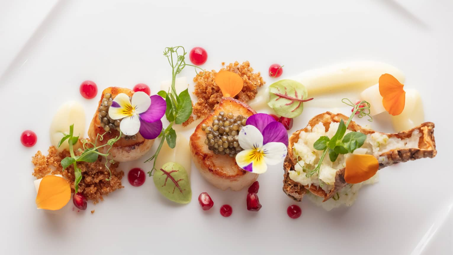 Aerial view of gourmet entree, scallops garnished with edible flowers, herbs
