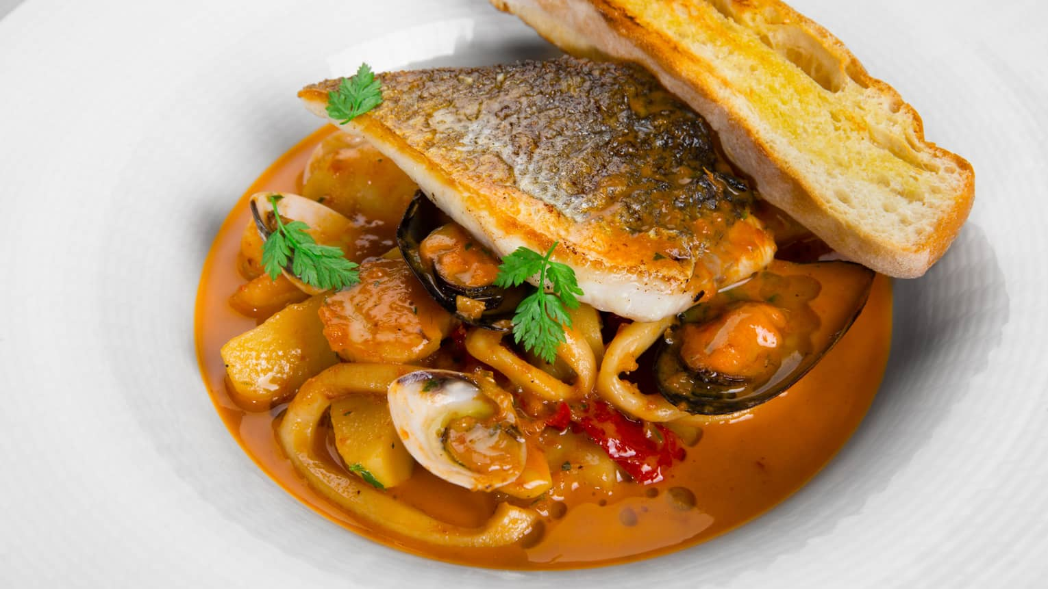 White bowl with fish fillet and skin, mussels, octopus and vegetables in red sauce, garlic toast