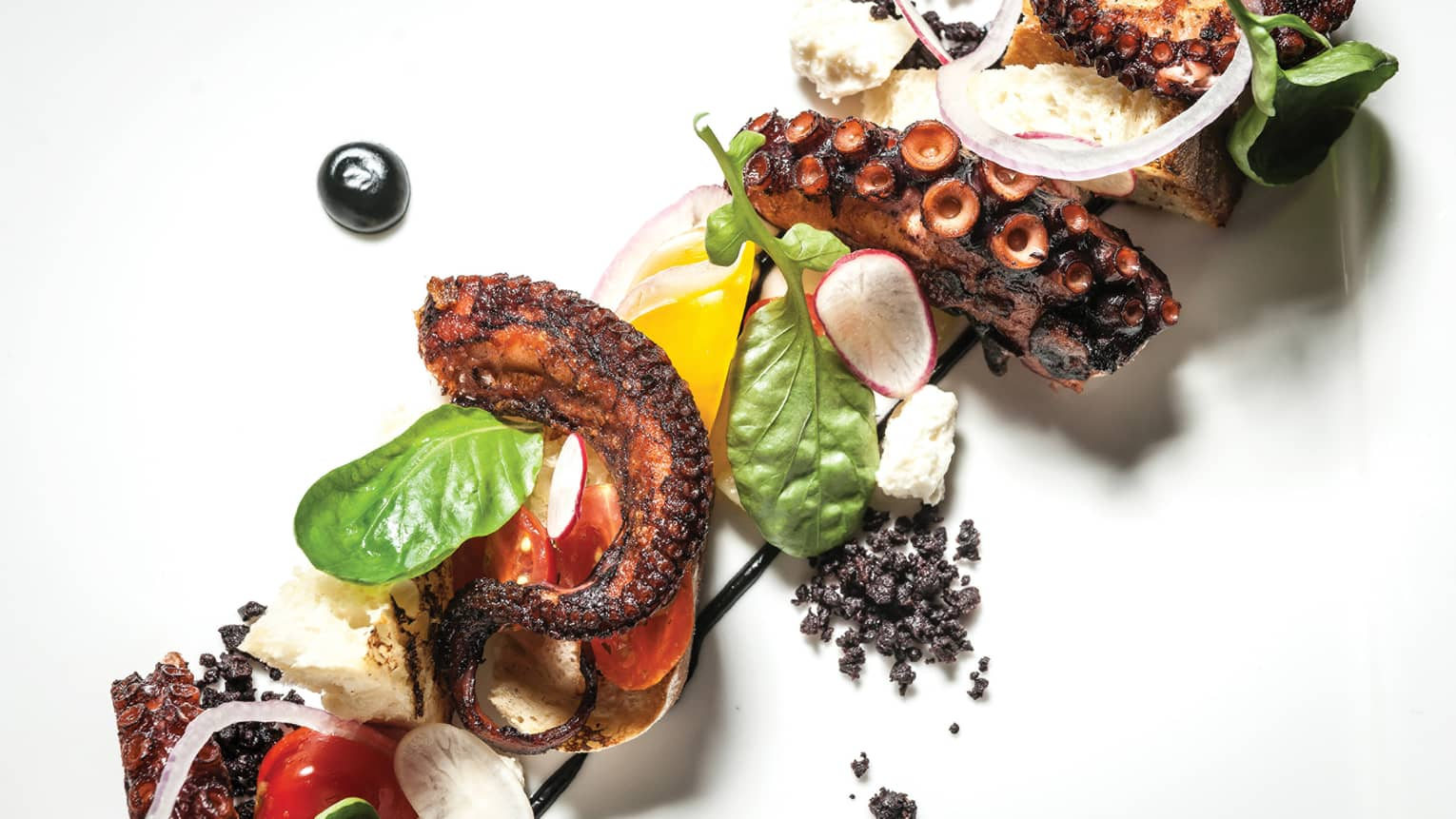 Grilled blackened octopus on platter with mixed greens, garlic chips, black olive crunch