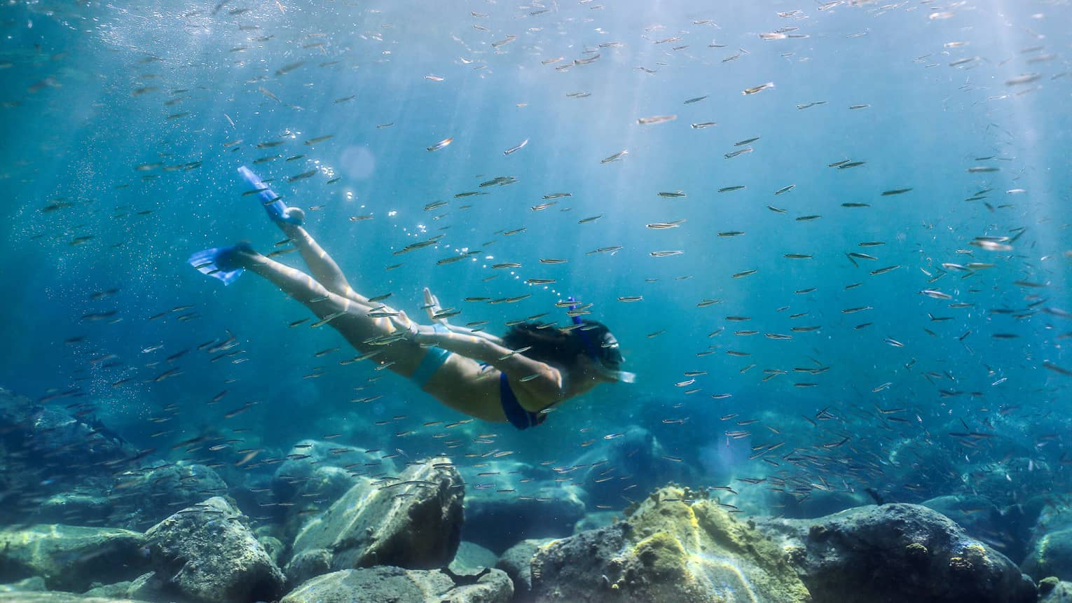 Women with snorkel, mask and fins swims in coral reef among tropical fish