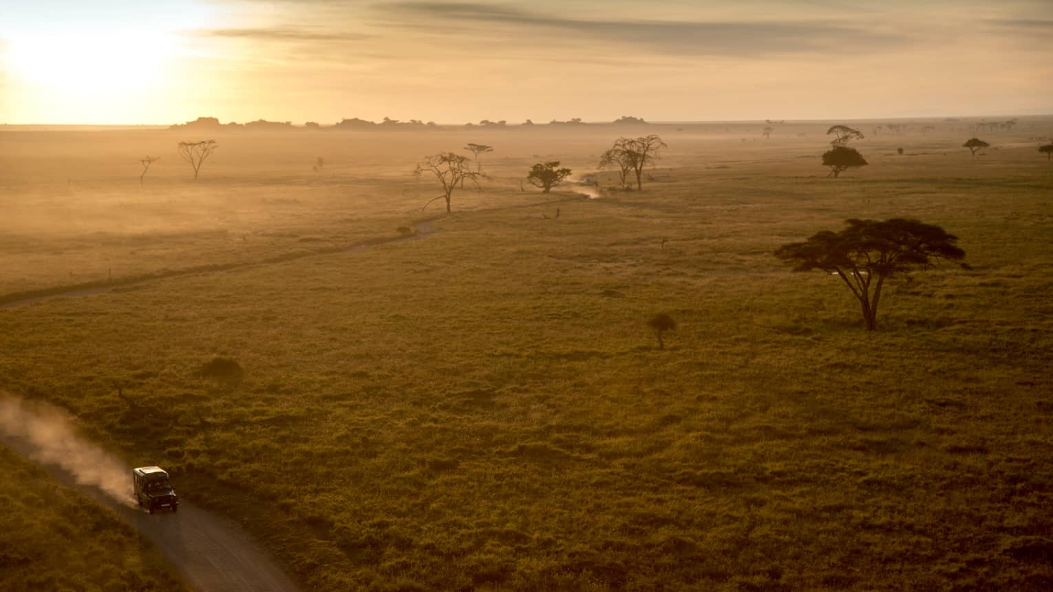 Sunset over Serengeti plains, trees