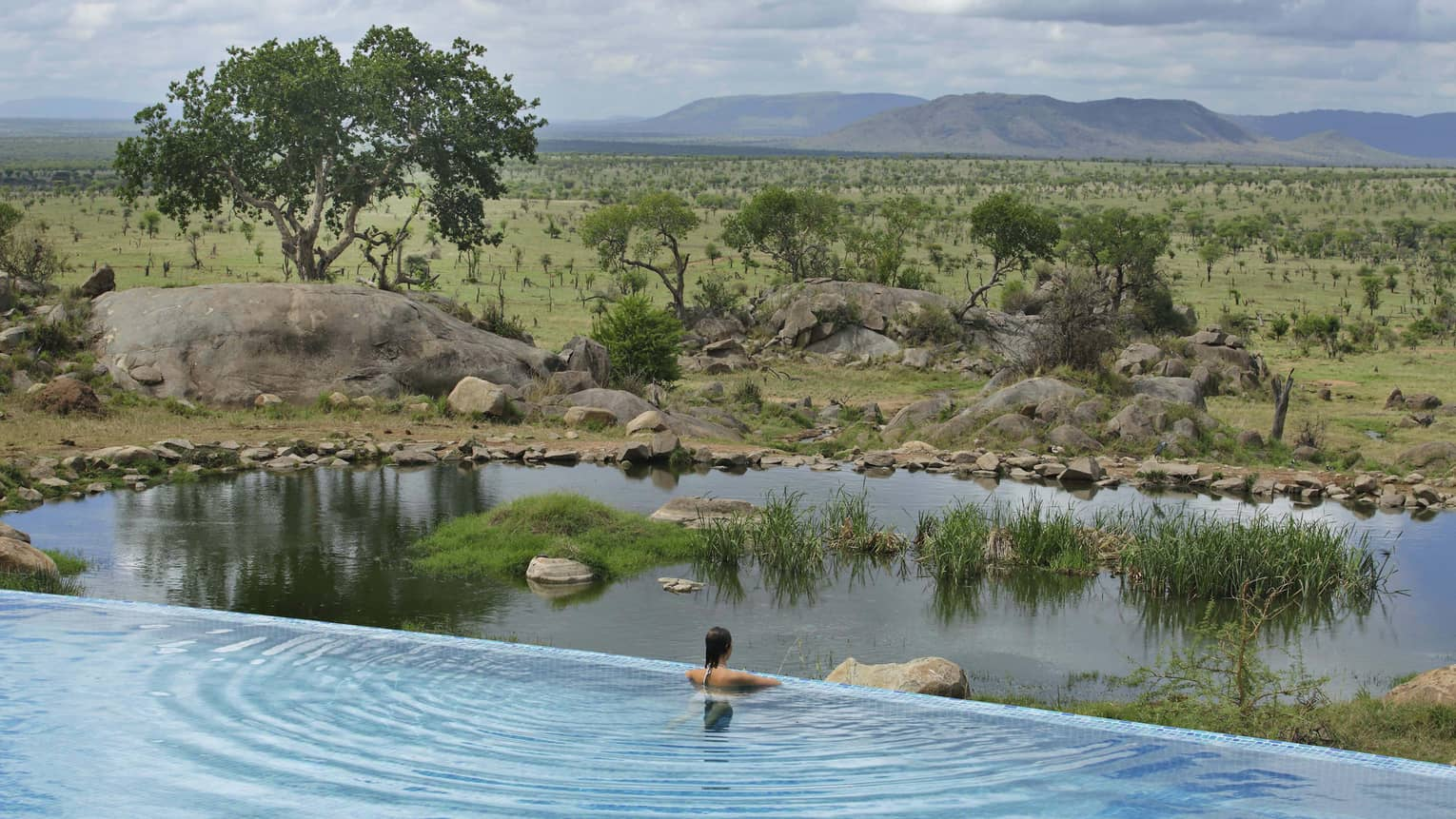 Woman stands at edge of infinity pool overlooking animal watering hole
