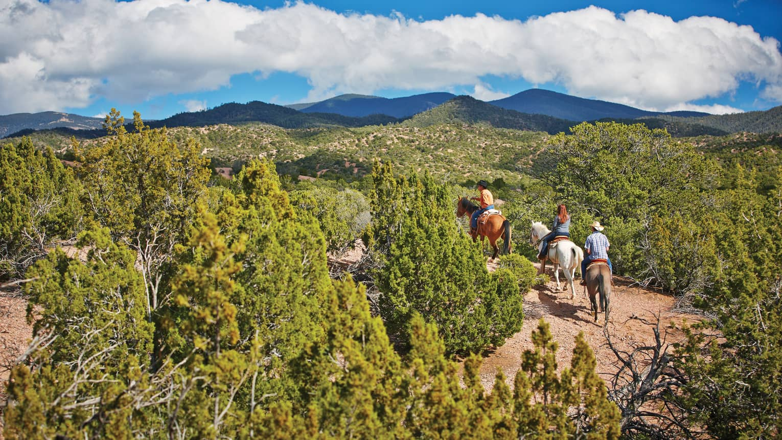 Three people horseback riding through trail, brush on desert mountain