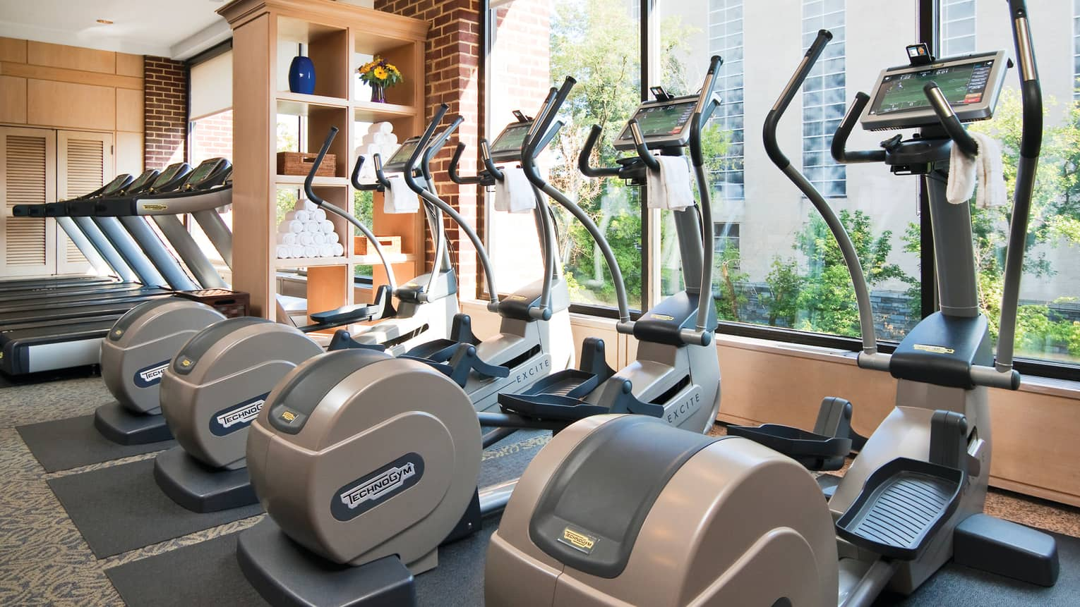 Row of cardio elliptical machines in front of sunny window in Fitness Centre