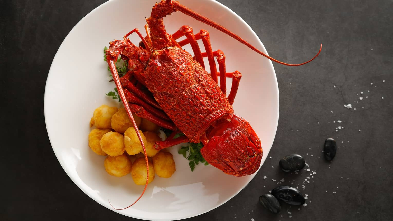 CYX - Fried Australian Lobster