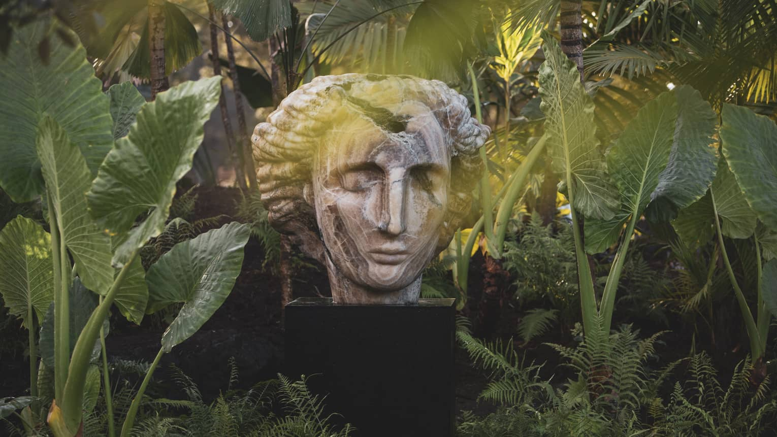 Bust with closed eyes amid tropical foliage