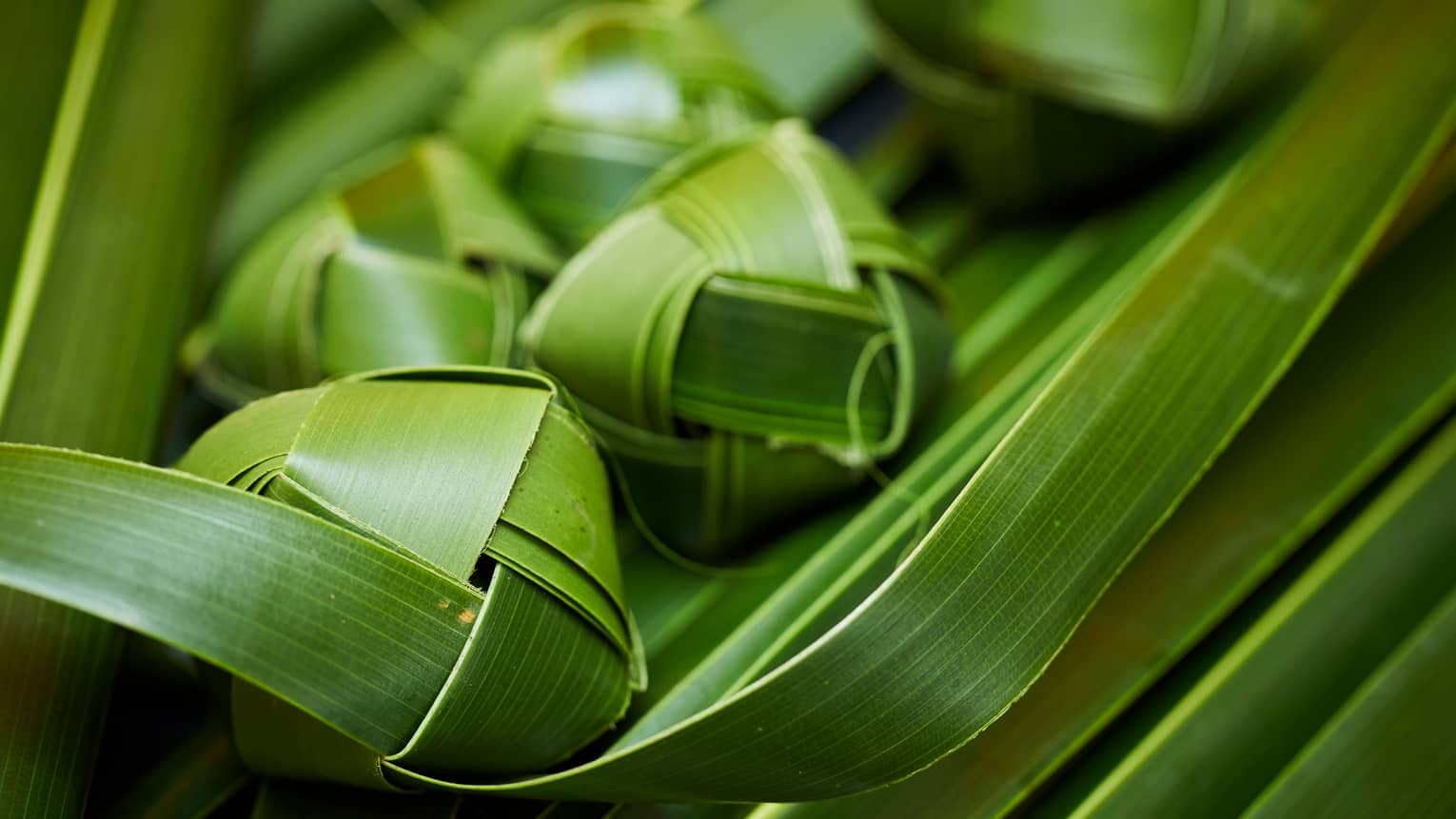 Hawaiian cultural activity – weaving palm fronds