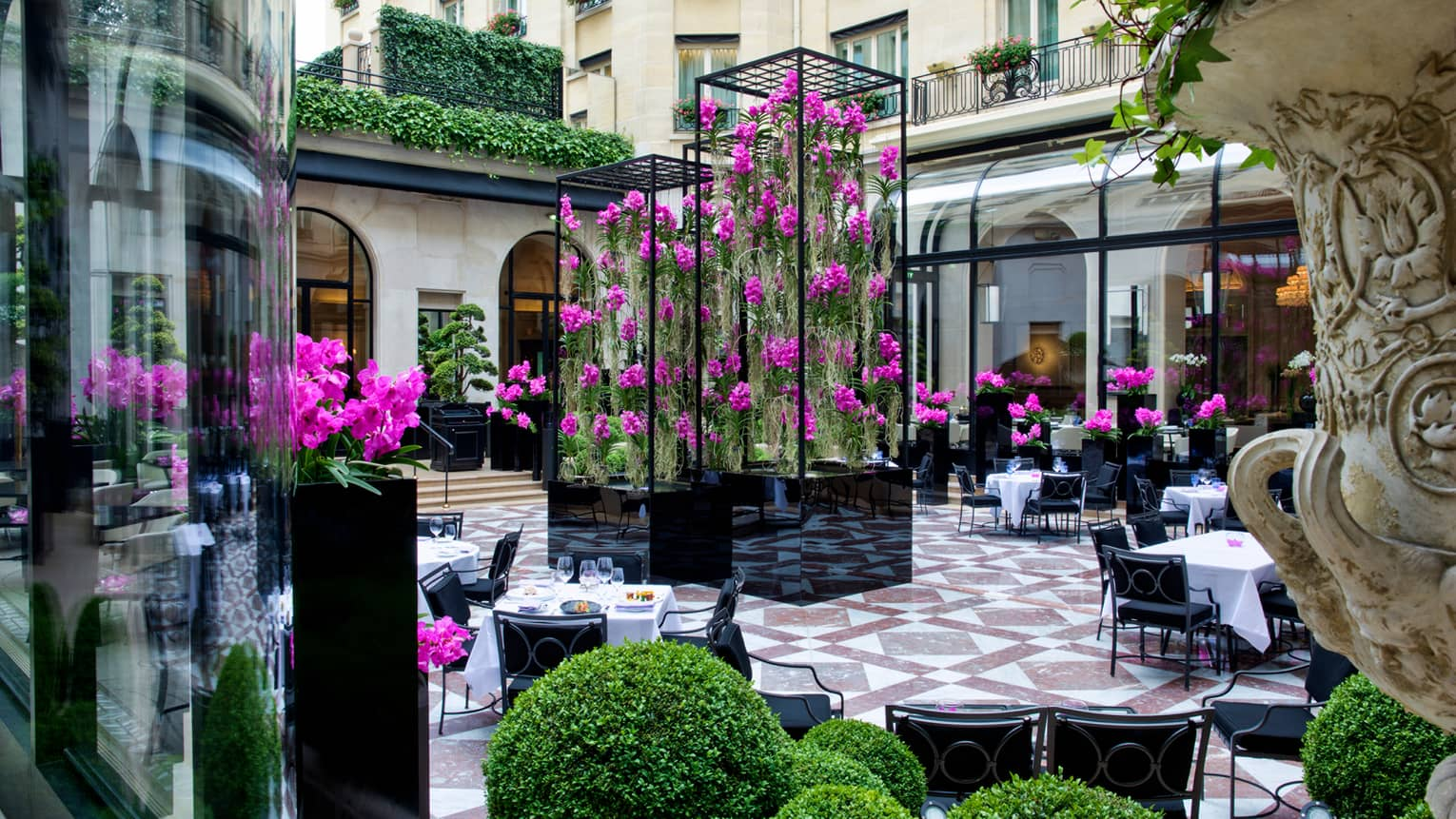 L'Orangerie courtyard dining patio, tall black planters with trailing purple flowers
