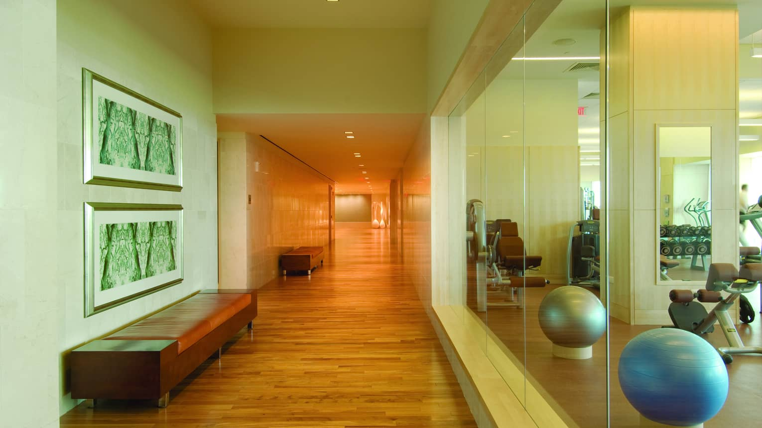 Fitness centre hallway and glass window view of cardio machines and two exercise balls