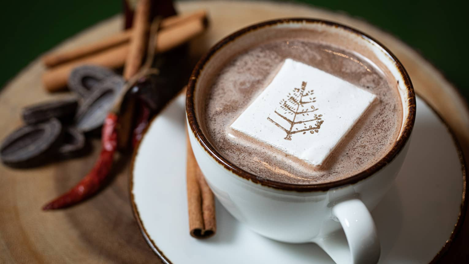 A closeup of a white cup of hot chocolate, a marshmallow with the four seasons logo in the middle of it, cinnamon sticks, dark chocolate chunks and a red chili garnished on the matching white saucer