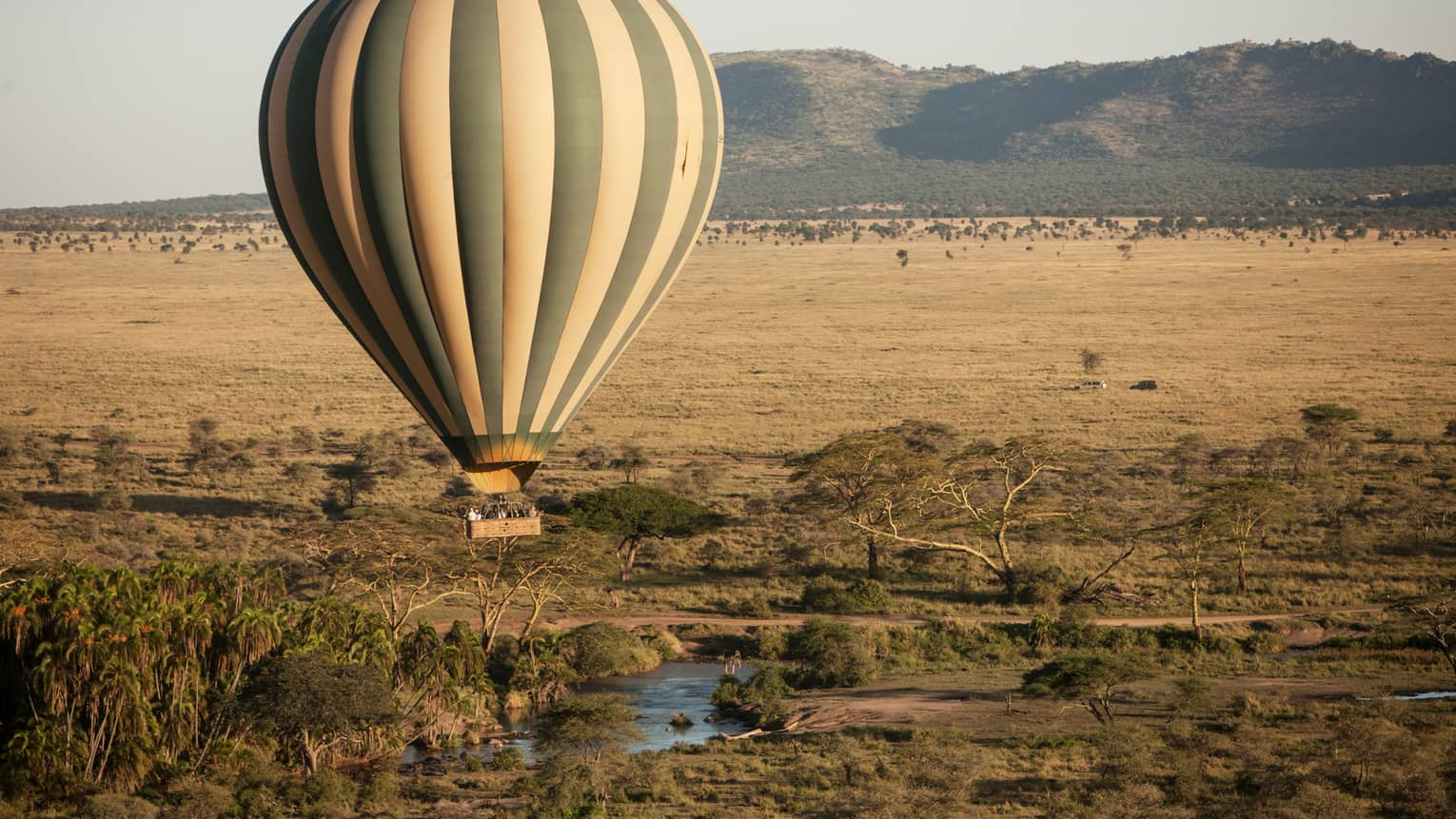Striped hot air balloon hovers over Serengeti field