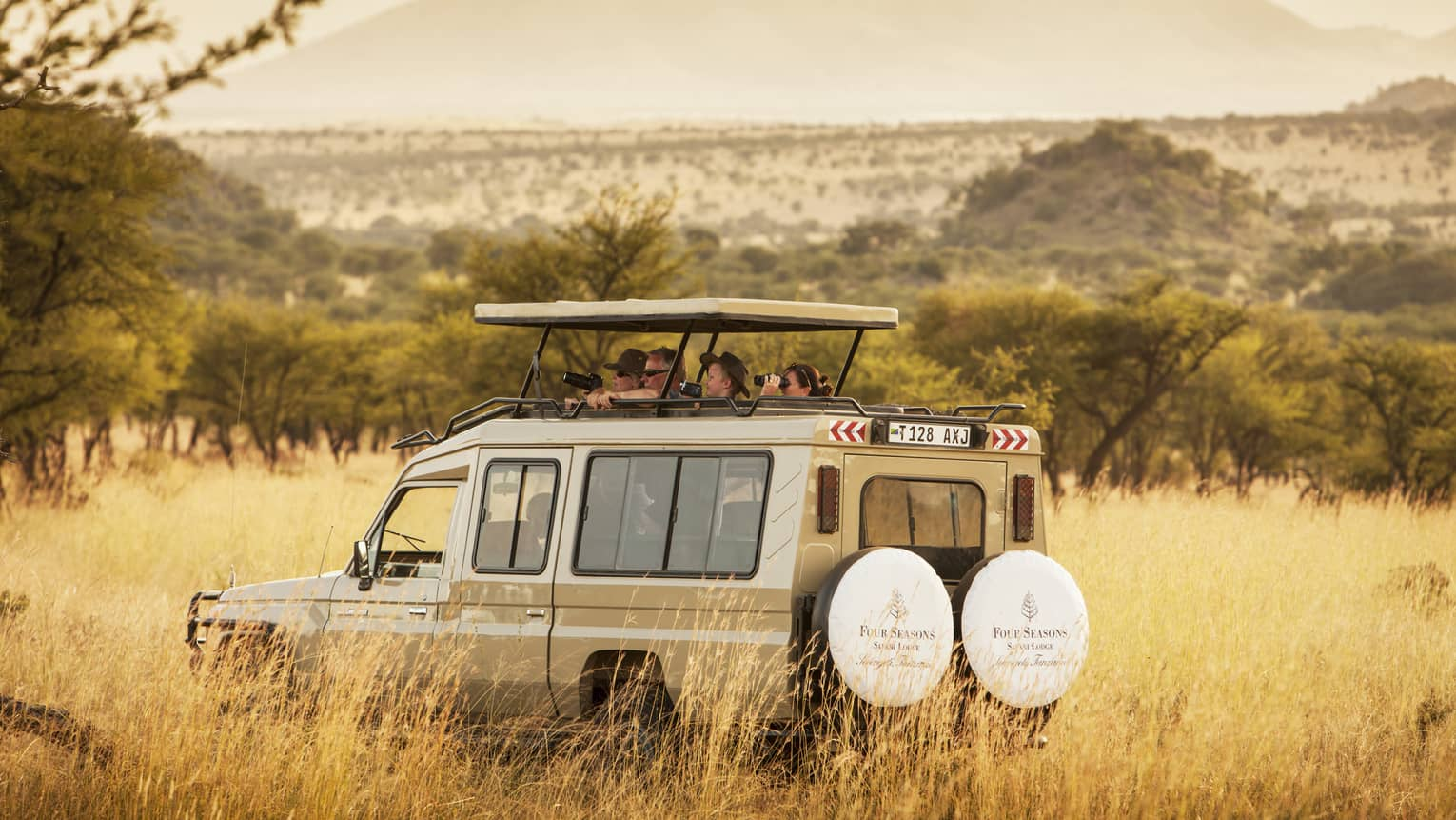 Guests peek out from white safari jeep roof in tall grass of Serengeti park