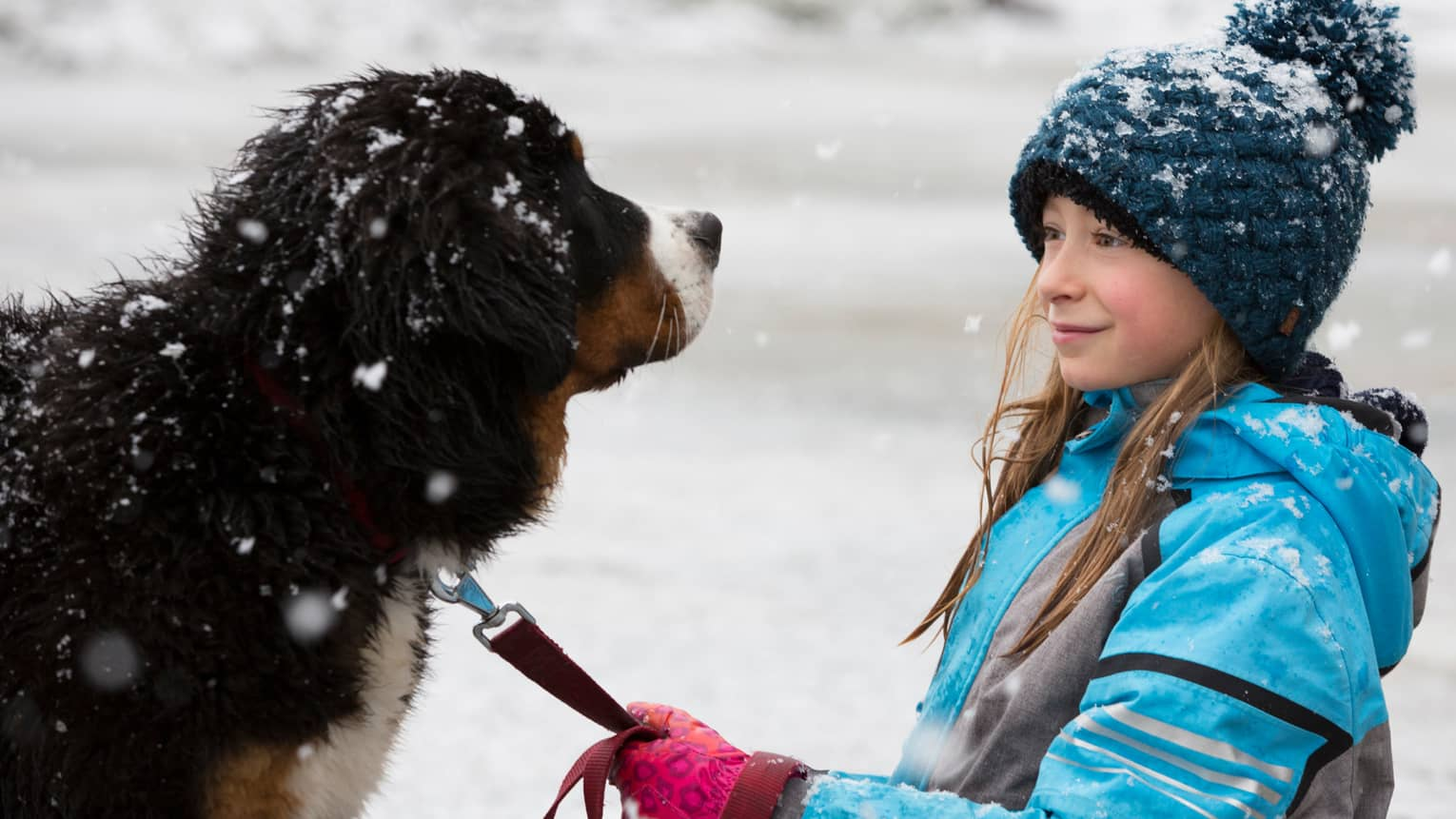 Young girl with knit hat holds leash of large dog as snow falls