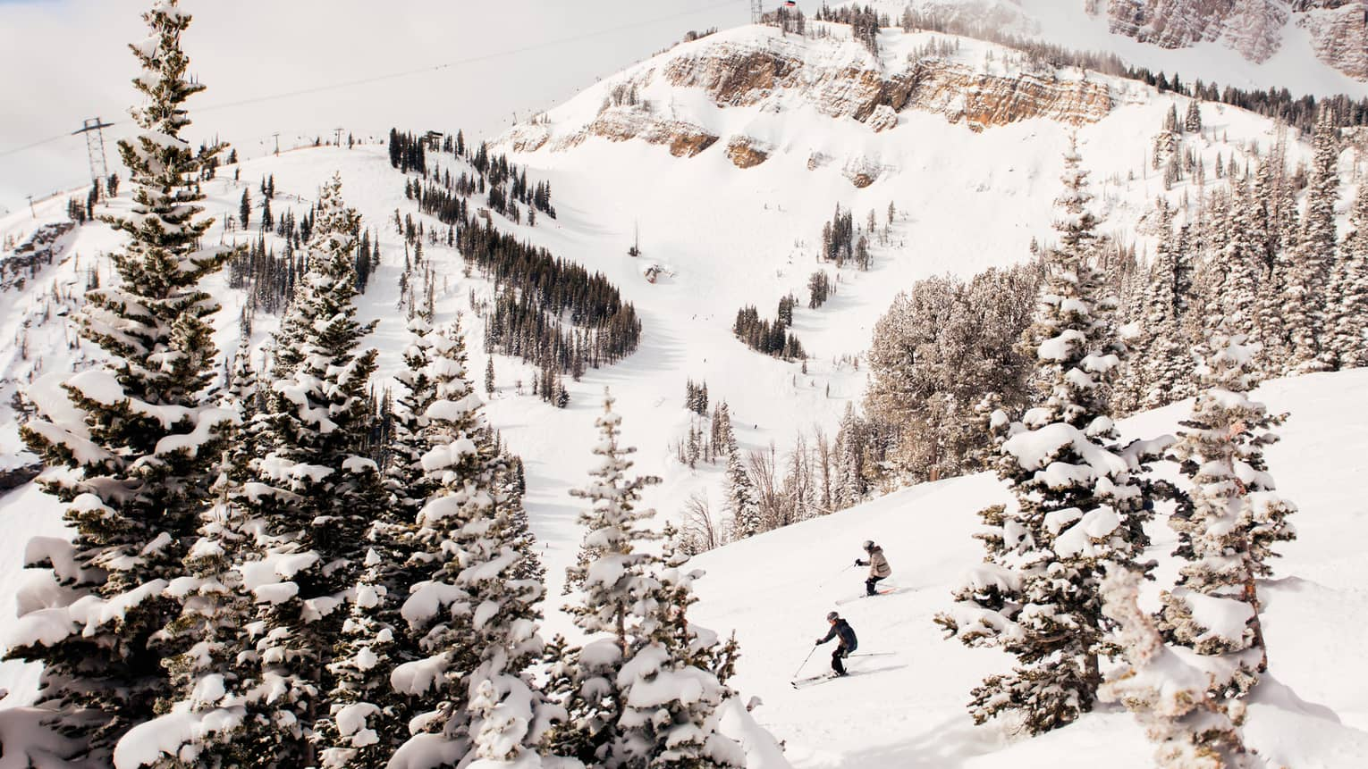Aerial view of two skiers high up on mountain slope between trees