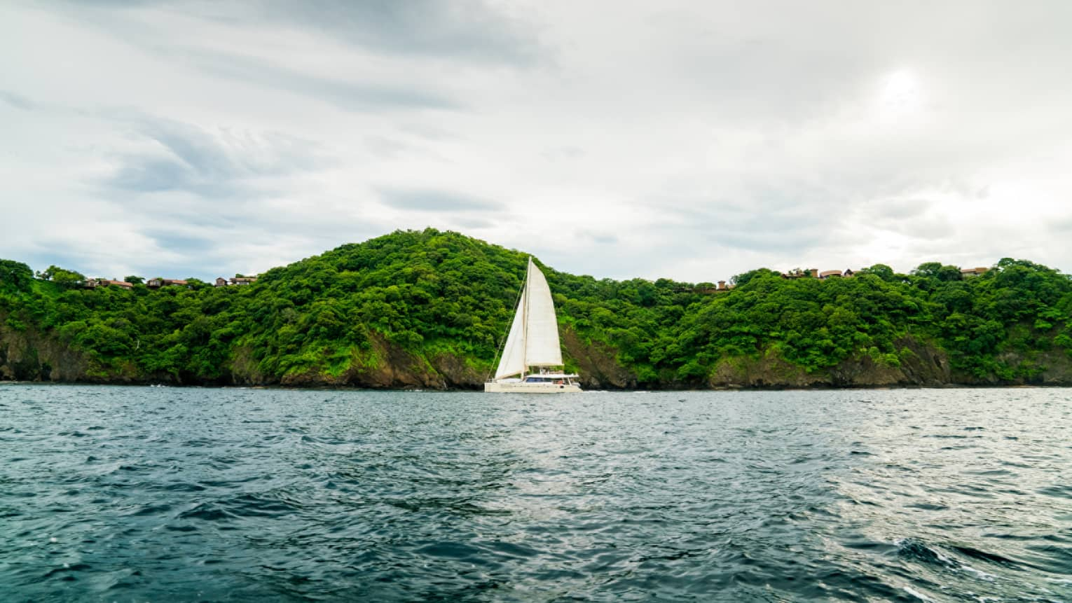 Catamaran boat with white sail on ocean in front of green mountain