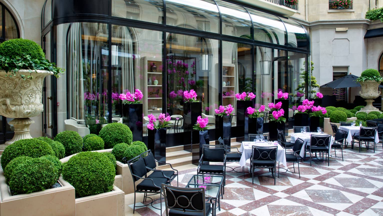 L'Orangerie dining patio by potted shrubs, purple flowers